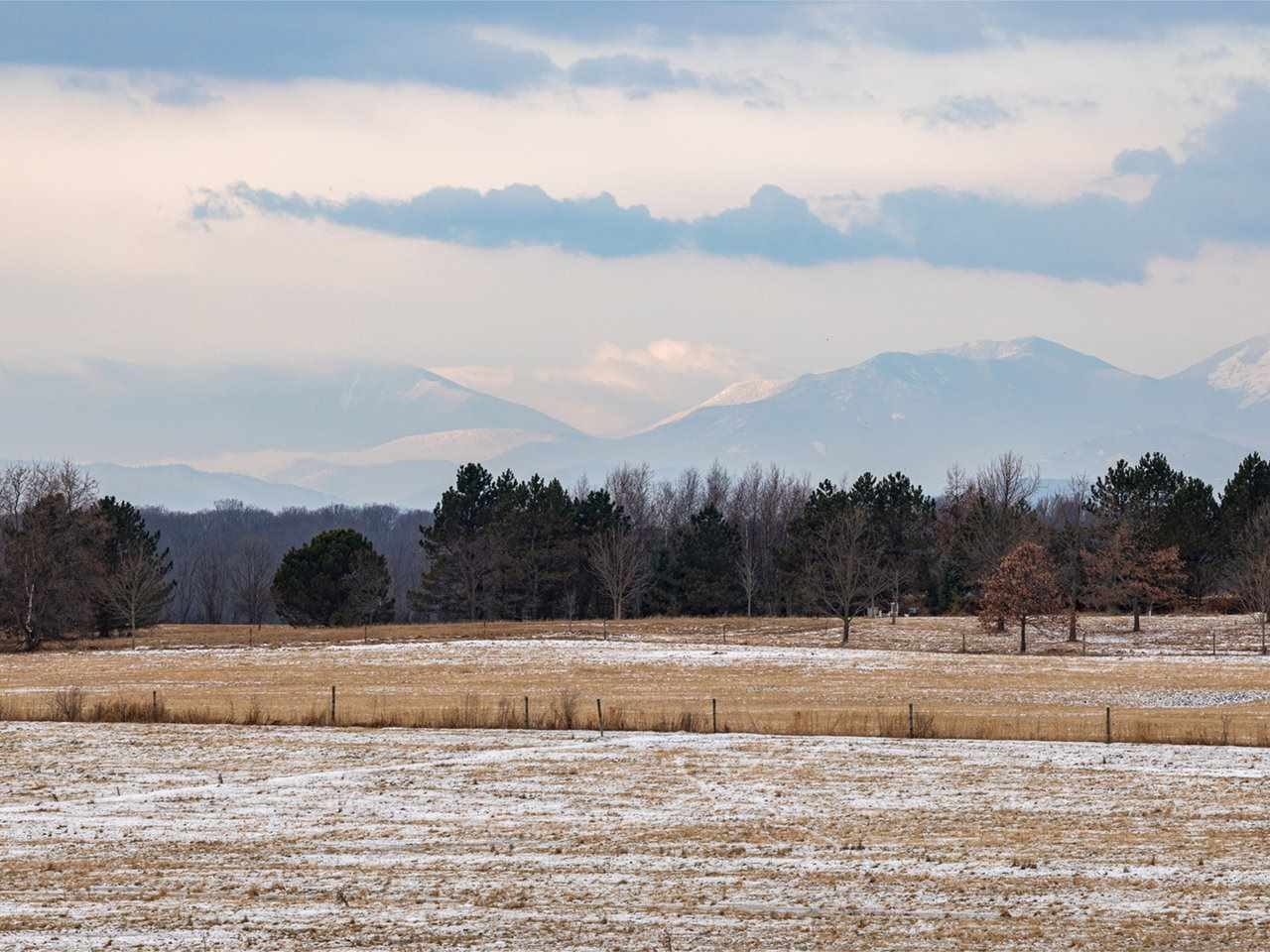 Lovely 124 acre parcel with westerly Adirondack views in northern Charlotte near lake and Shelburne Village. This parcel is comprised of approximately 40 acres of forested land and approximately 84 of open, rolling agricultural land. Dramatic mountain views from several areas. Land is currently partially fenced for cattle and has many possibilities for future use. A beautiful combination of rolling hills, woods and wide open pasturess. This location can't be beat with easy access to water and town and conserved land across the street. Perc testing completed shows soils for 5-10 wastewater systems and power and well are already on site. 20 minutes to Burlington, University of Vermont Medical Center and airport.