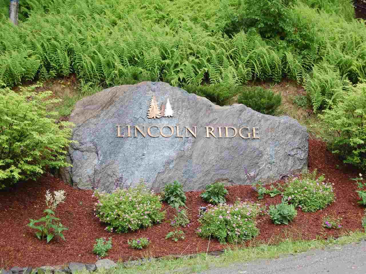 16 Lincoln Ridge