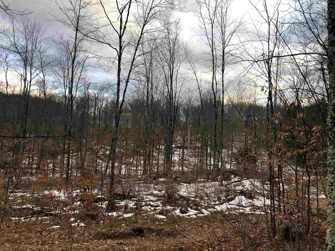 Springfield VT 05151 Land for sale $List Price is $89,000