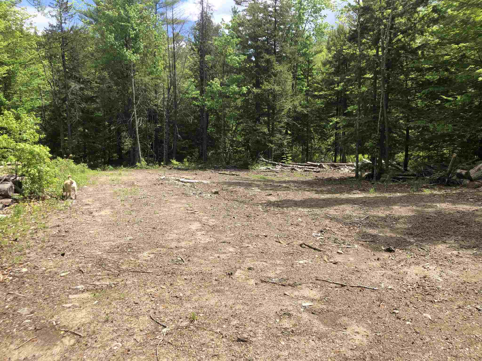 MLS 4791689: Robie Road, Alexandria NH