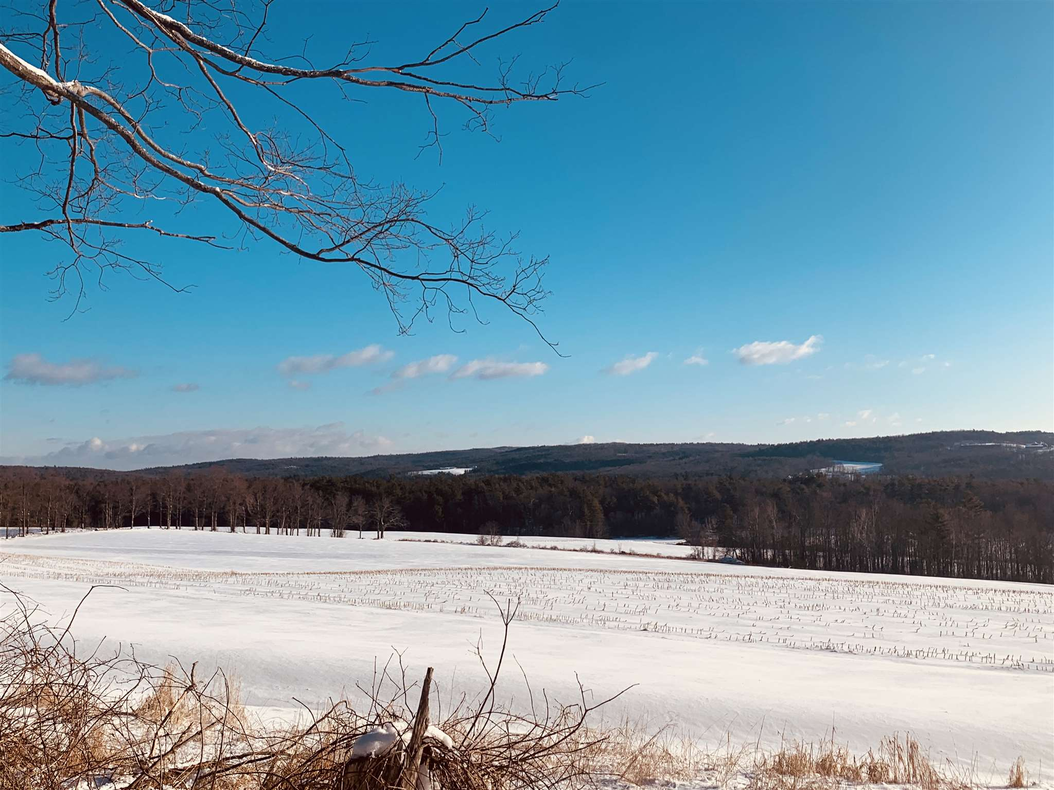 CHARLESTOWN NHLAND  for sale $$189,900 | 25.6 Acres  | Price Per Acre $0