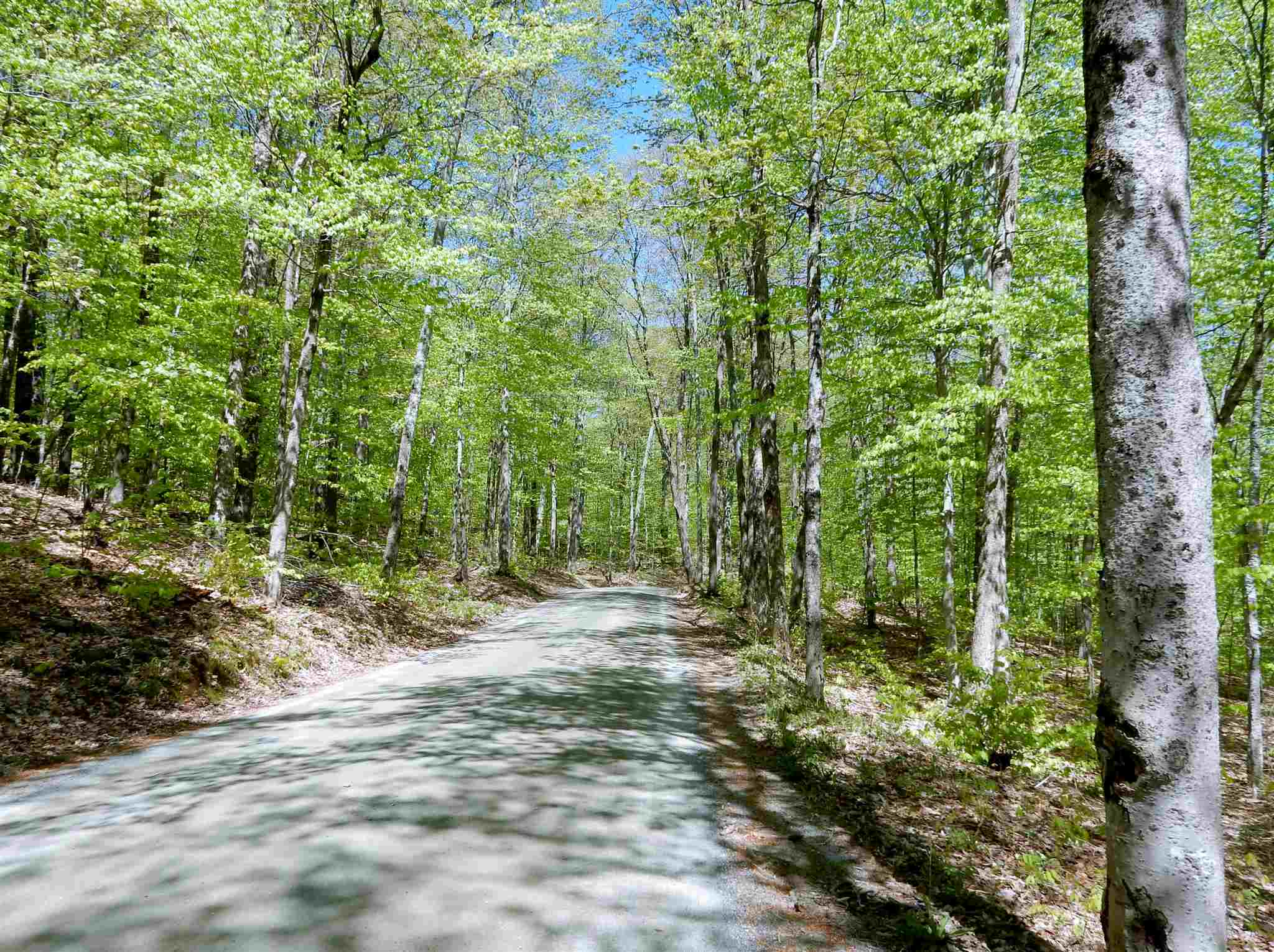 HARTLAND VT LAND  for sale $$82,500 | 8.44 Acres  | Price Per Acre $0  | Total Lots 2