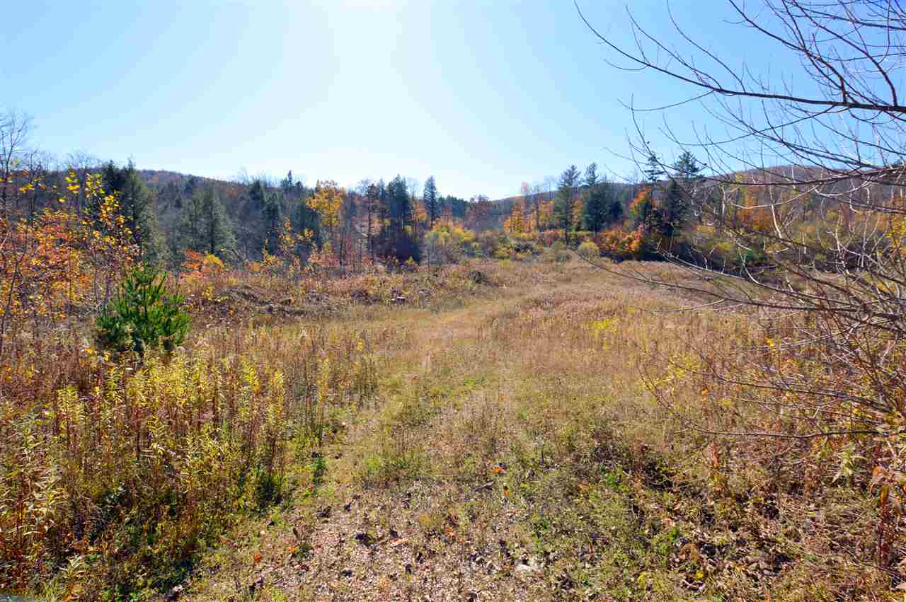 Plymouth VT Land  for sale $List Price is $40,000