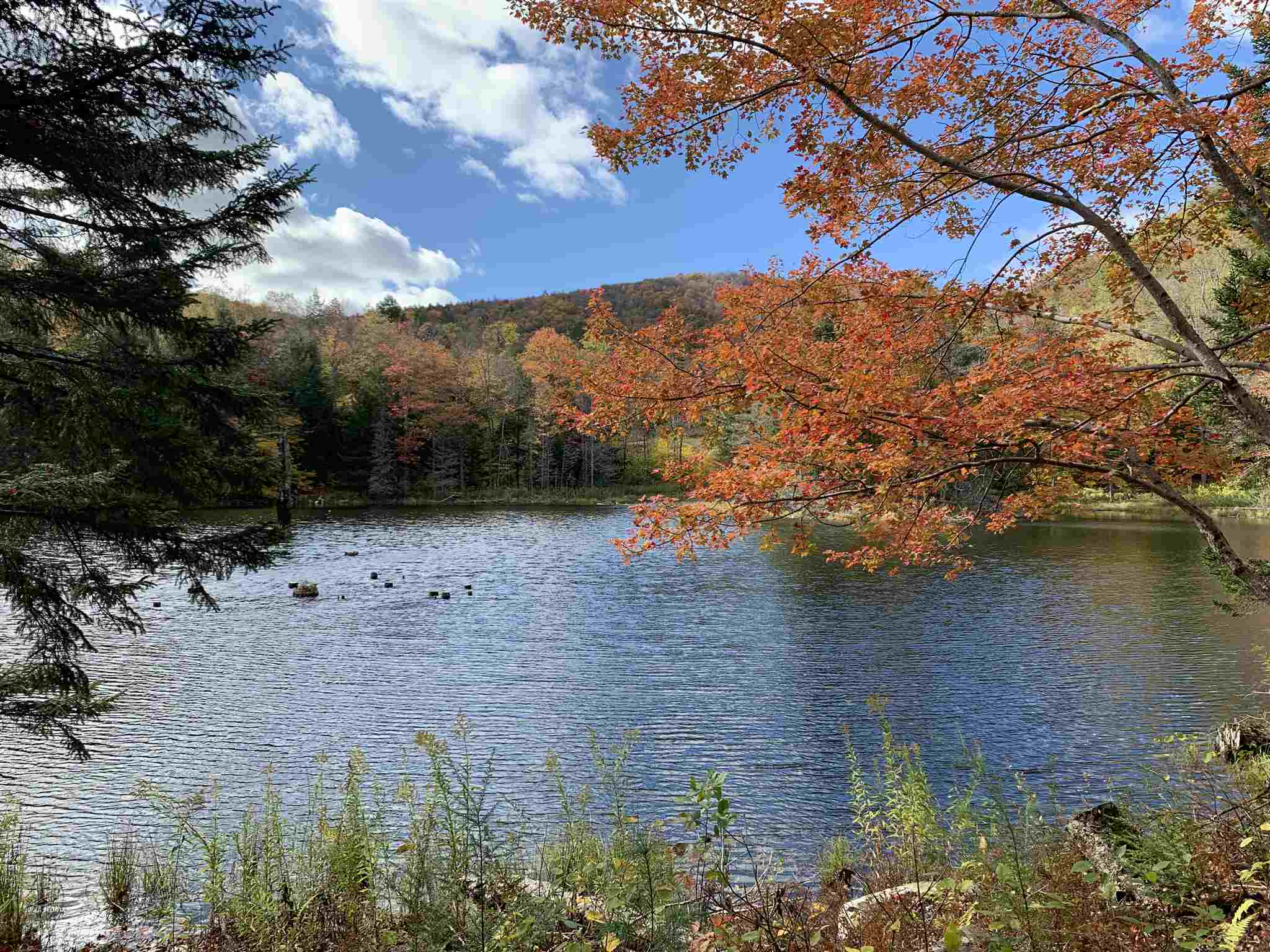 Plymouth VT Land  for sale $List Price is $50,000