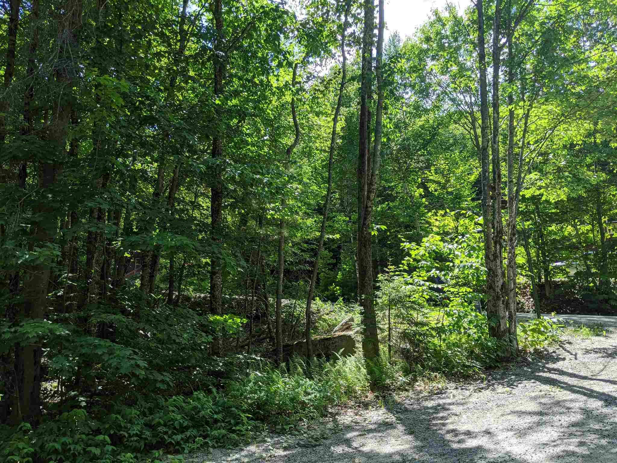 Newbury NH 03255 Land for sale $List Price is $19,900