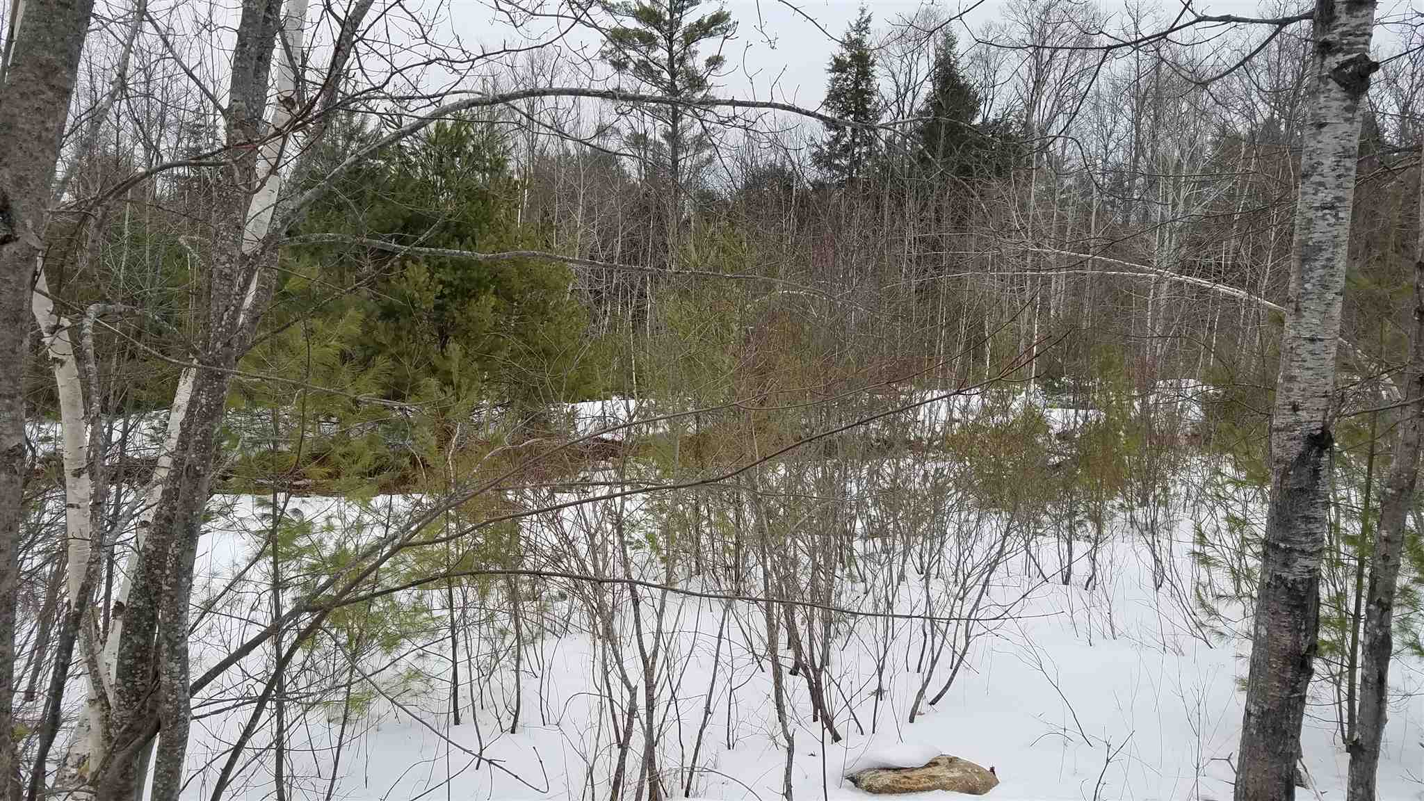 Newport NH 03773 Land for sale $List Price is $24,900