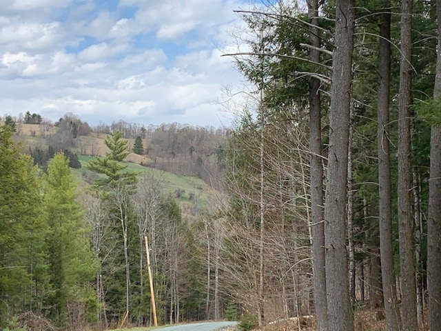 Woodstock VT Land  for sale $List Price is $199,000