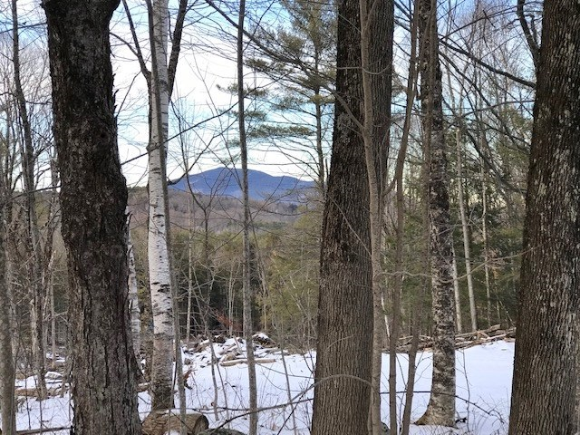 Weathersfield VT 05156Land for sale $List Price is $55,900