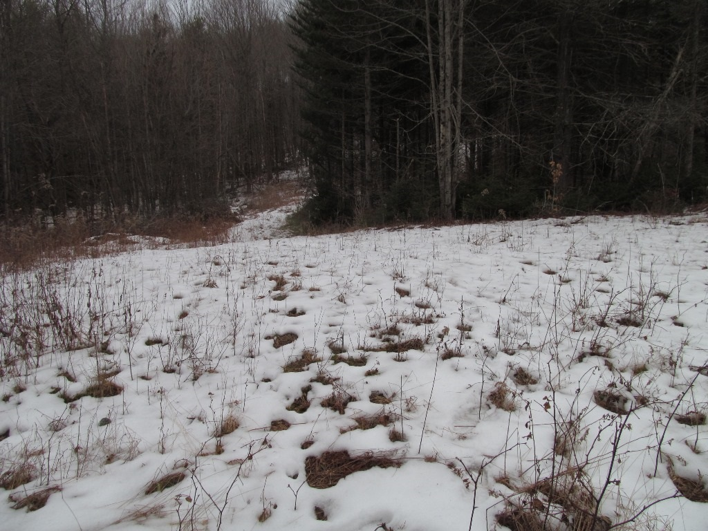 Claremont NH 03743 Land for sale $List Price is $15,000
