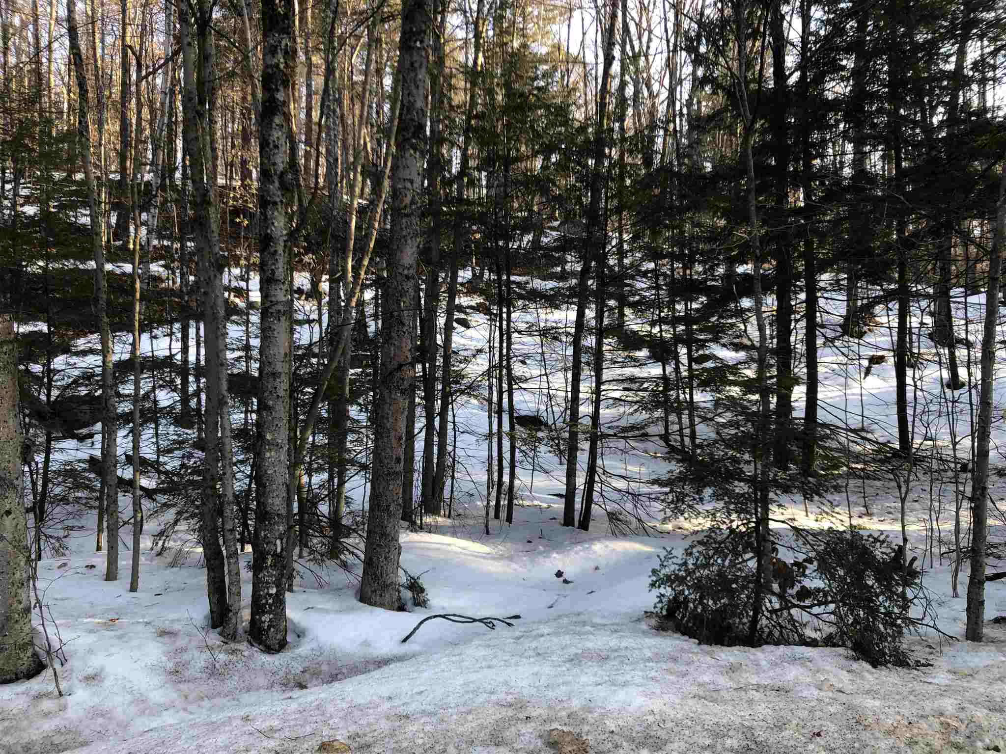 MLS 4796361: Fowler River Road, Alexandria NH