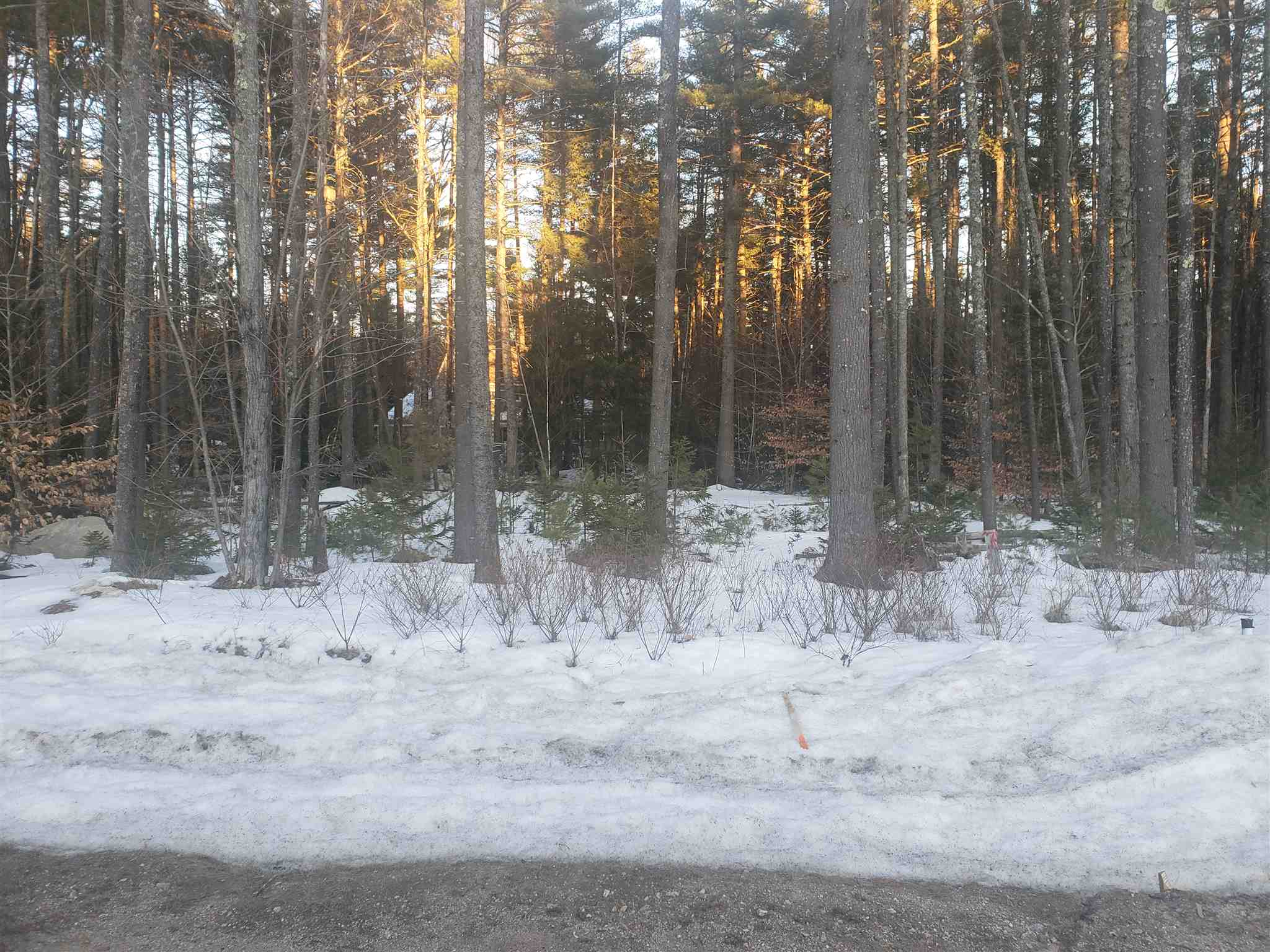 CONWAY NH LAND  for sale $$55,000 | 1.00 Acres  | Price Per Acre $0