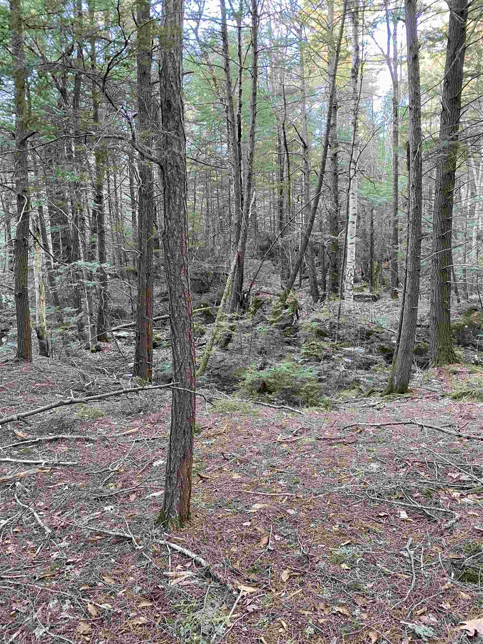Washington NH 03280 Land for sale $List Price is $10,000