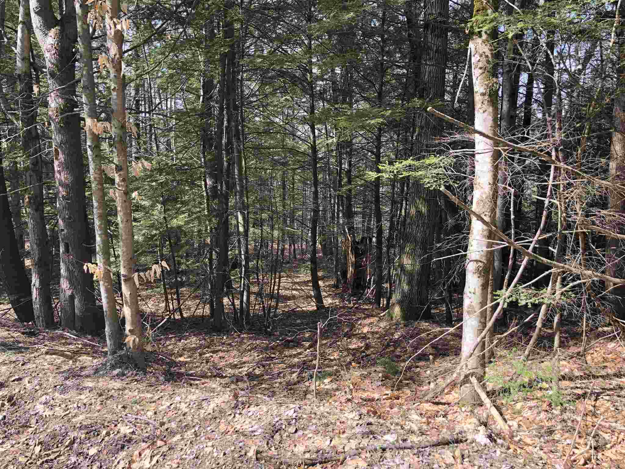 VILLAGE OF OSSIPEE VILLAGE NH IN TOWN OF OSSIPEE NHLand / Acres for sale