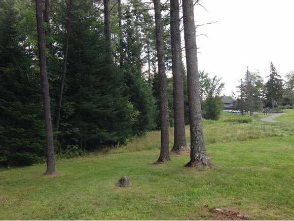 Village of Eastman in Town of Grantham NH  03753 Land for sale $List Price is $35,000