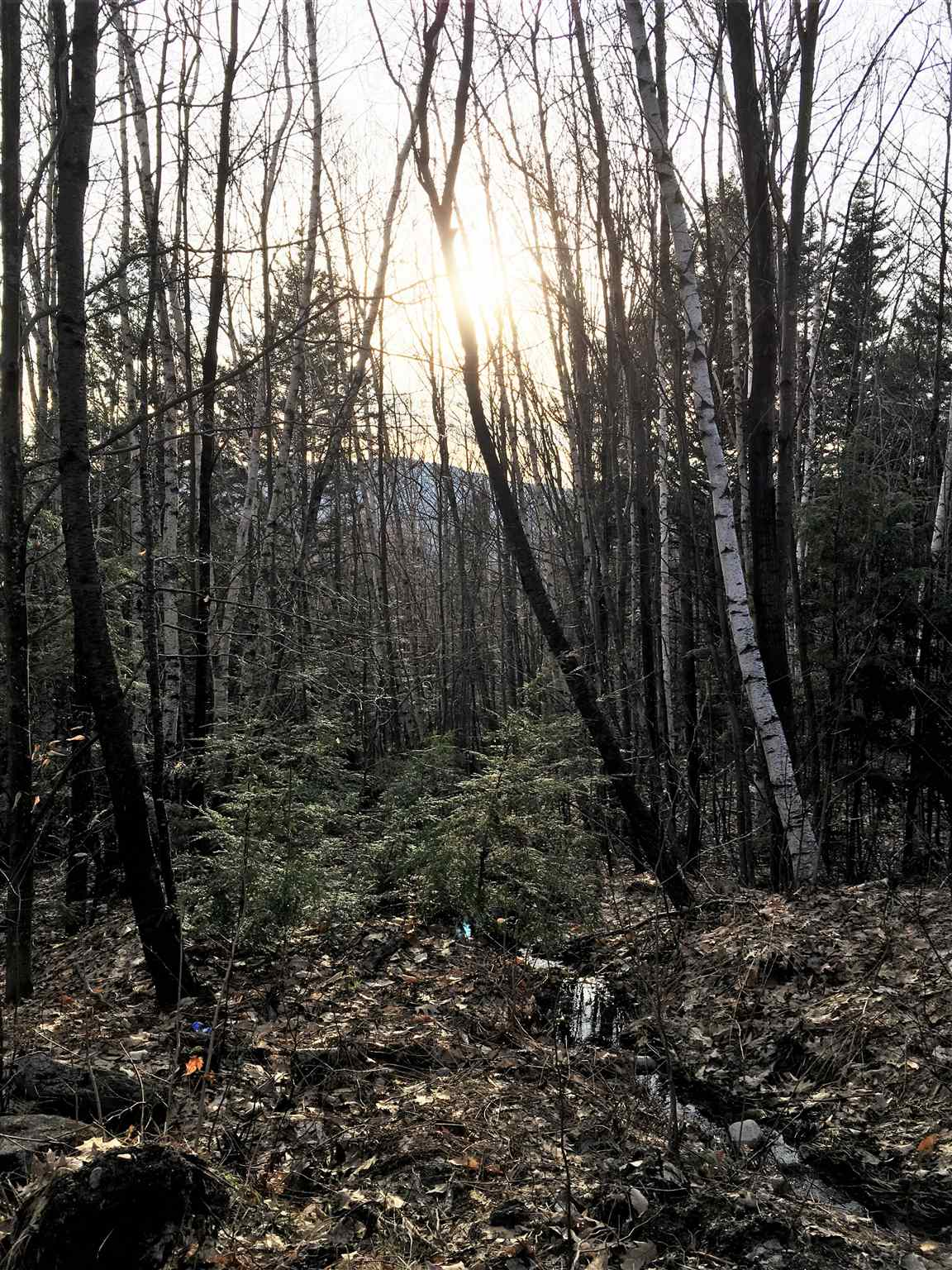 MLS 4801598: Lot 72 Perkins Hill Road, Alexandria NH