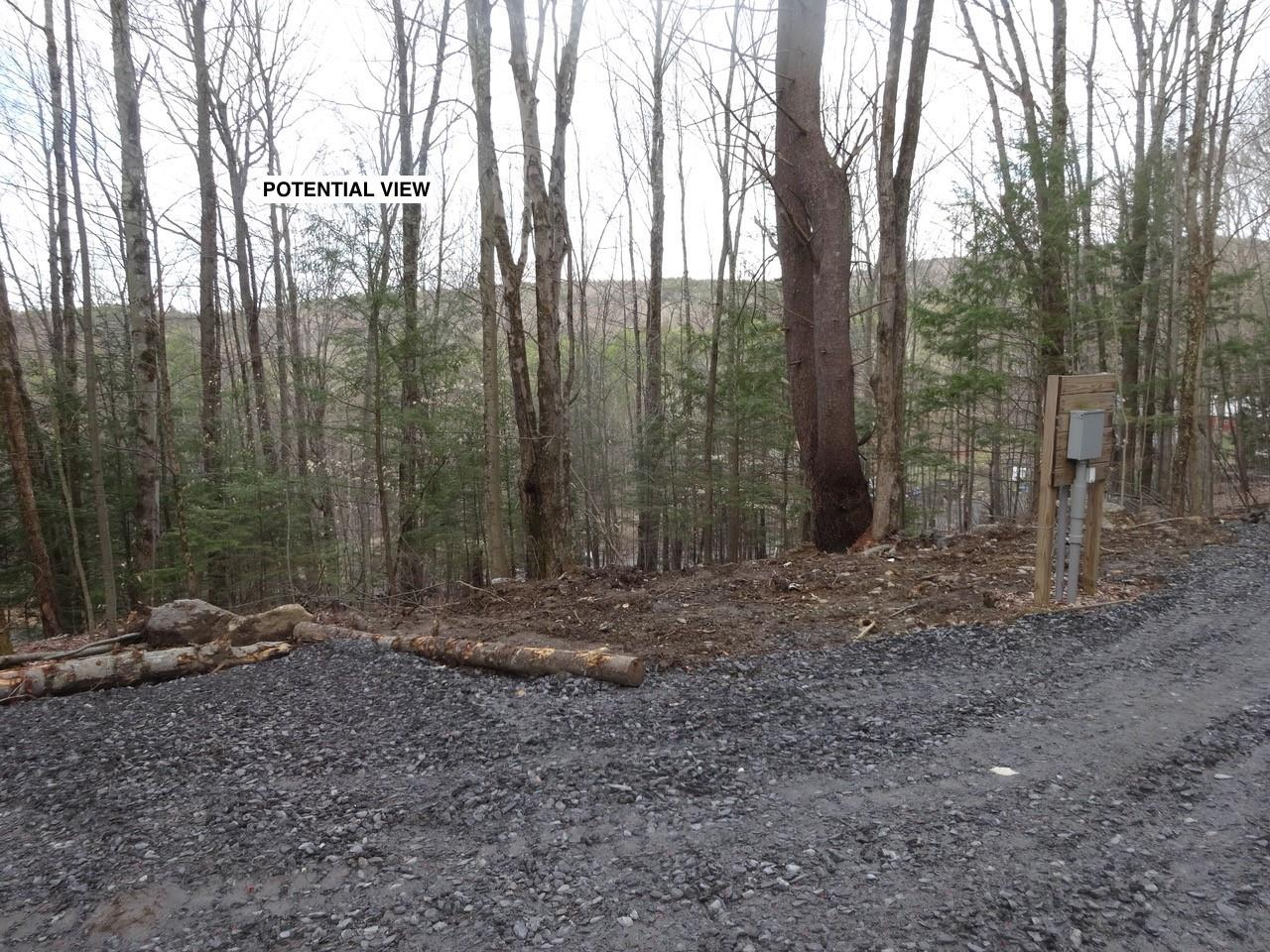 WESTMINSTER VTLAND  for sale $$52,000 | 4.44 Acres  | Price Per Acre $0  | Total Lots 2
