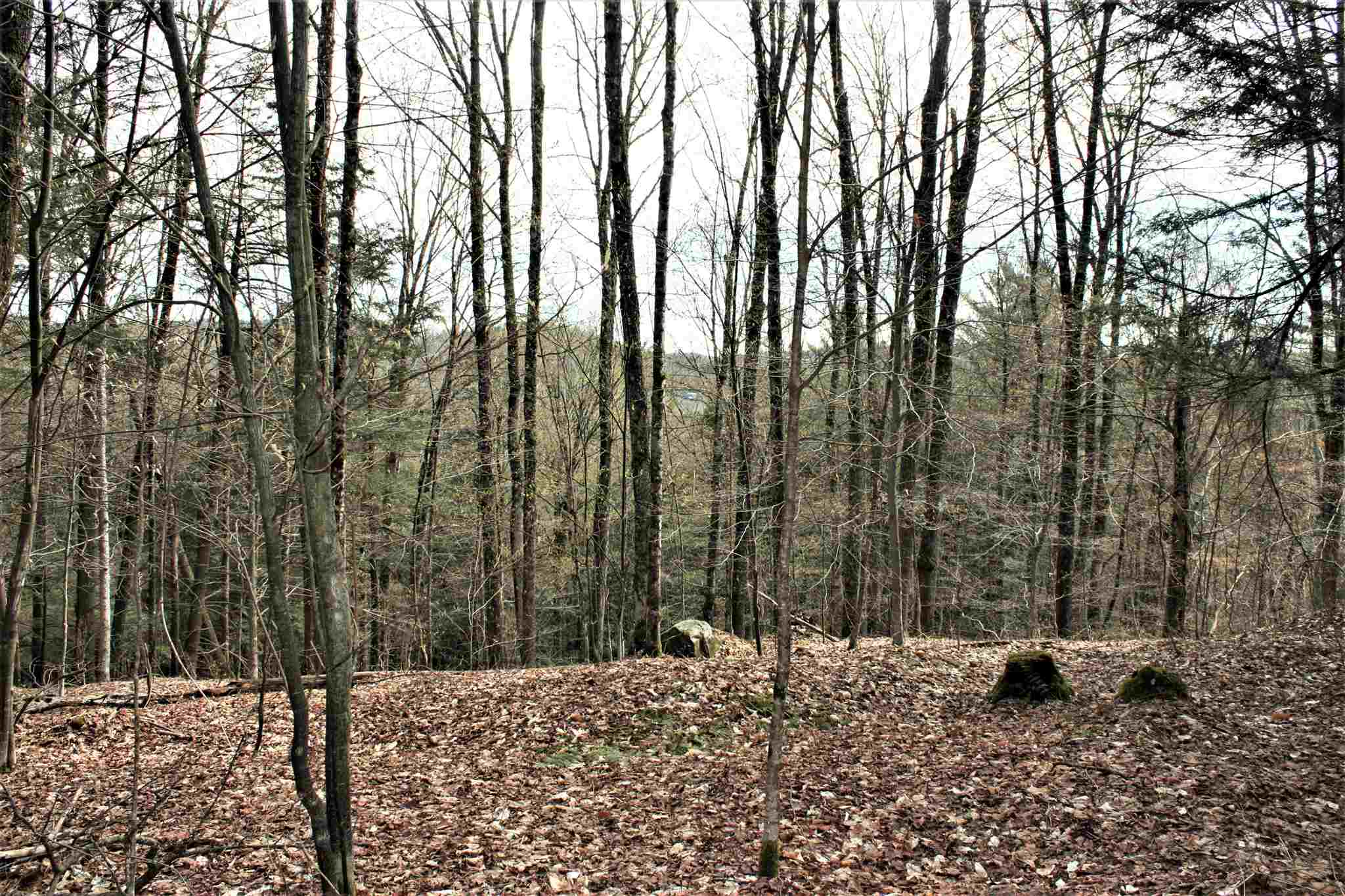 BARNARD VT LAND  for sale $$135,000 | 57.2 Acres  | Price Per Acre $0