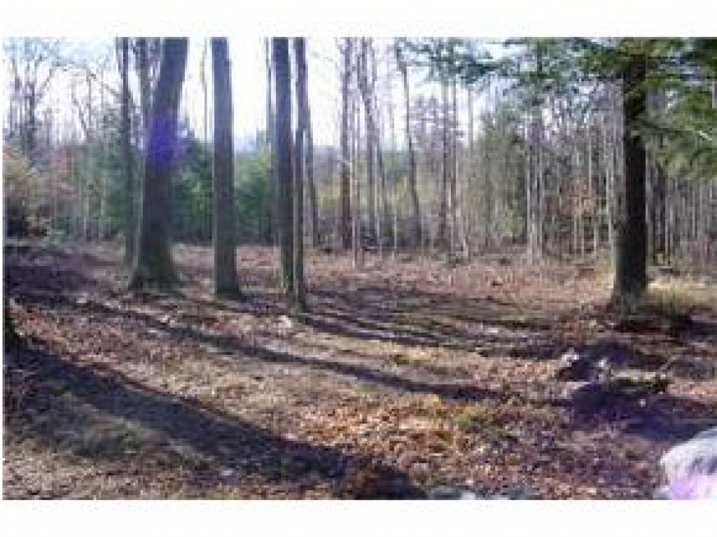 NEW DURHAM NH LAND  for sale $39,900