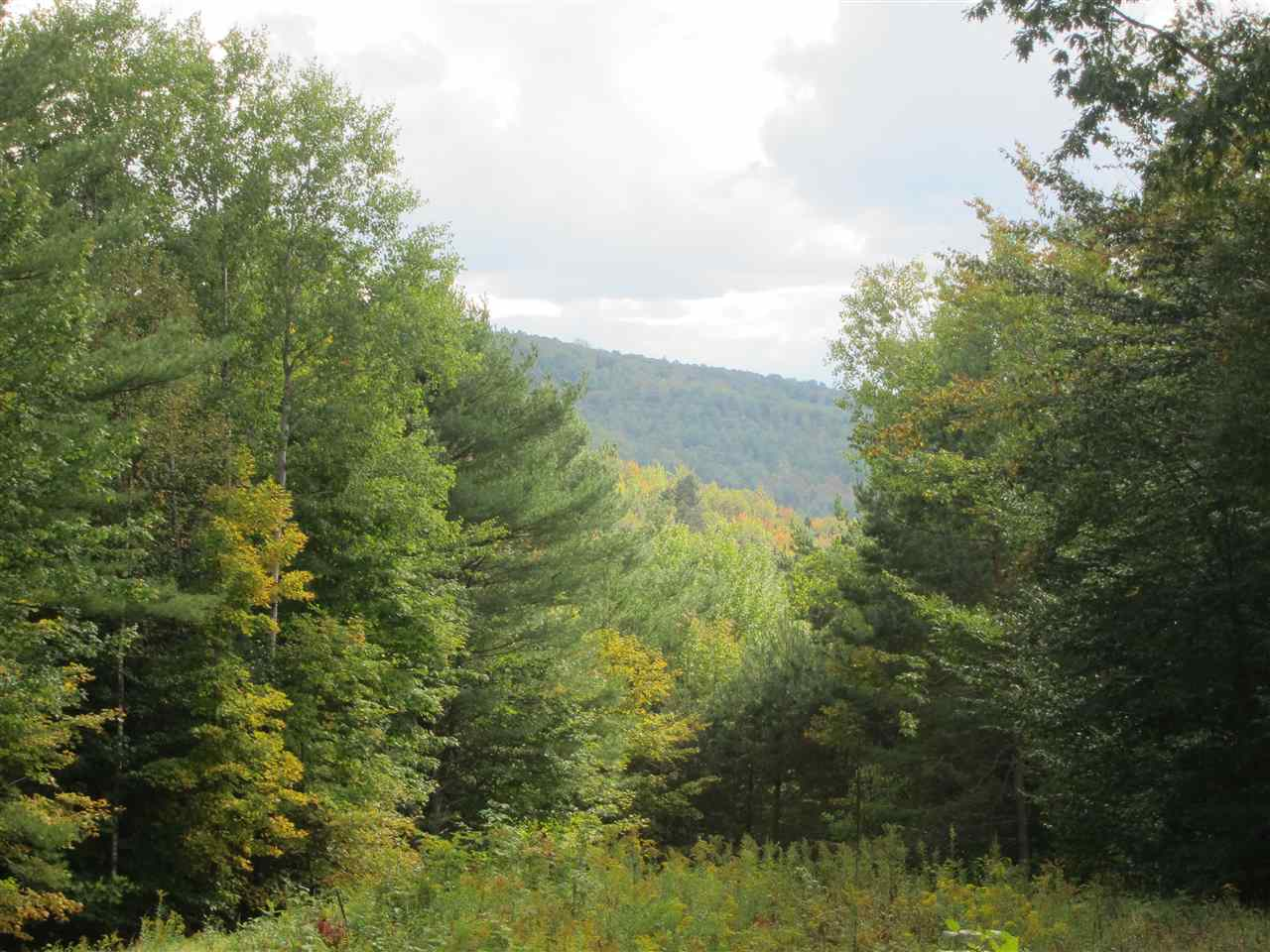 Woodstock VT Land  for sale $List Price is $99,000