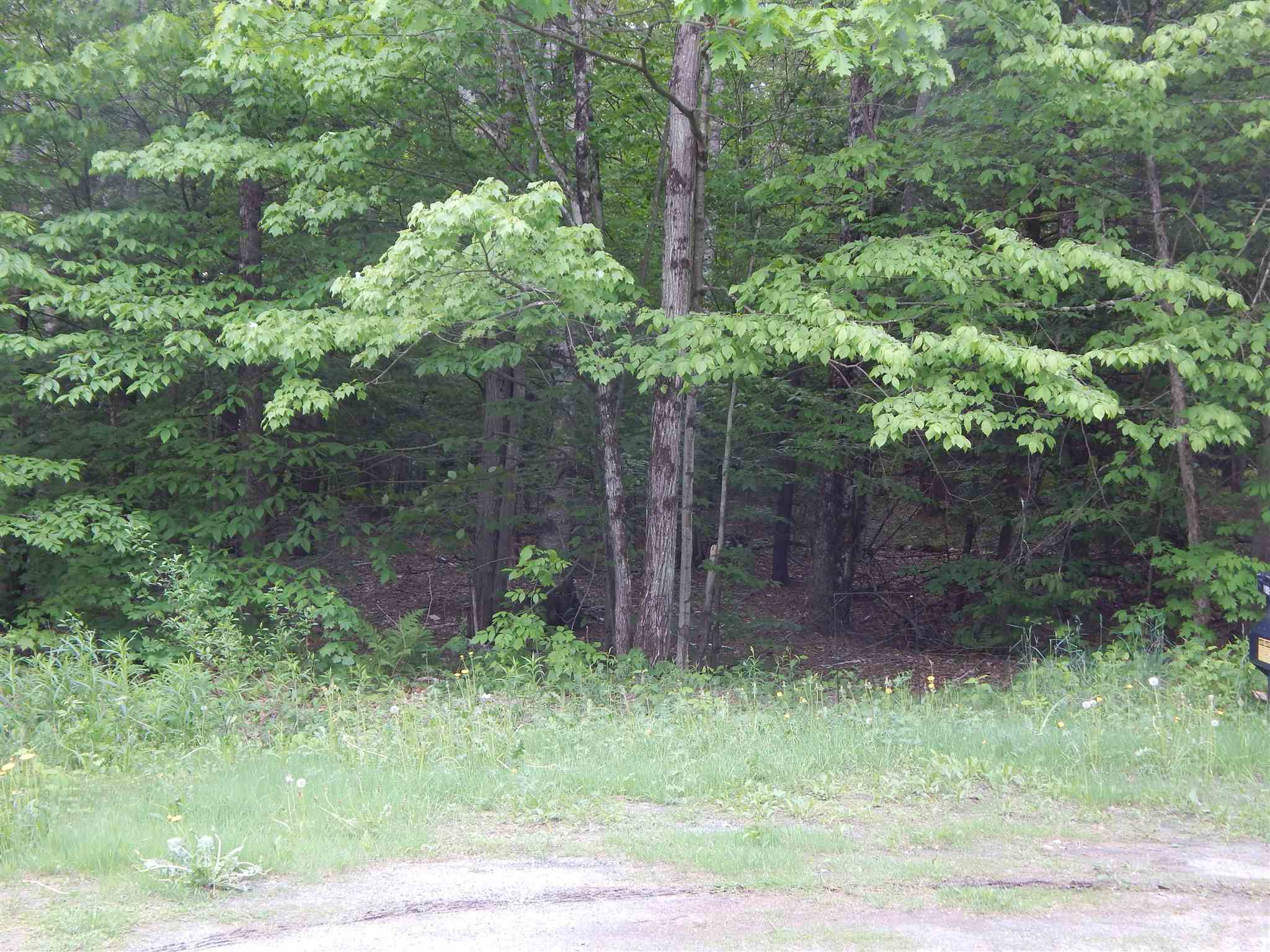 Windsor VT 05089 Land for sale $List Price is $40,000