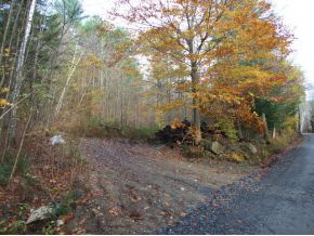 Nice lot on good gravel road. Prime area for horseback riding & driving, biking, hiking, great recreation location without being remote. Close to protected land & Knapp ponds. Close to Okemo for skiing. Wooded lot with long road frontage.