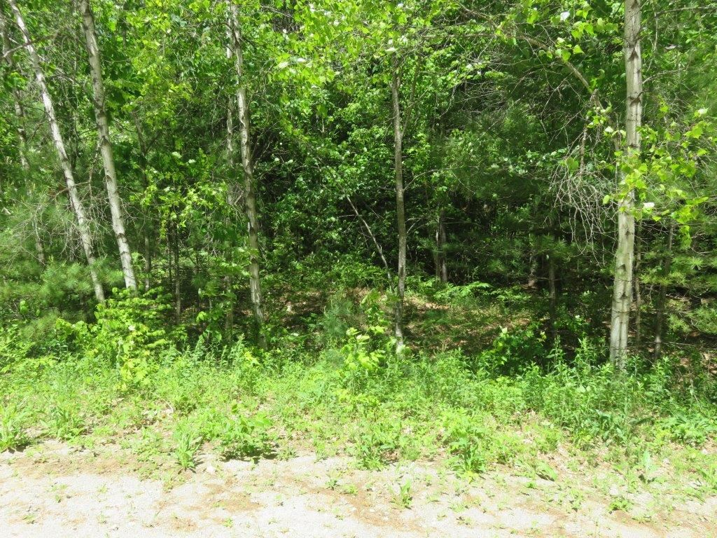 GRAFTON NH LAND  for sale $$80,000 | 8.7 Acres  | Price Per Acre $0  | Total Lots 2