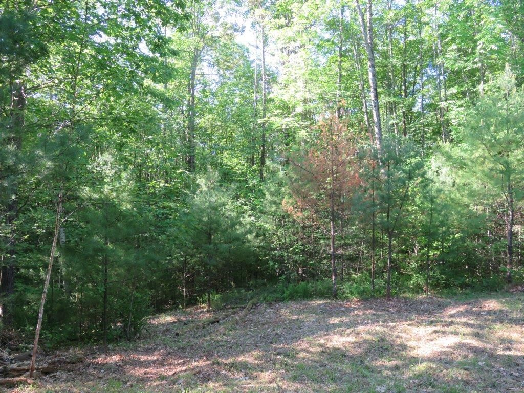 CANAAN NH LAND  for sale $$46,500 | 11 Acres  | Price Per Acre $0