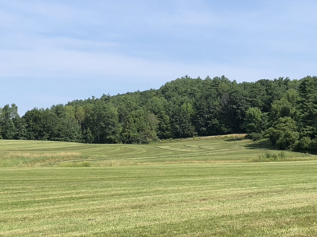 LYME NHLAND  for sale $$695,000 | 69.41 Acres  | Price Per Acre $0  | Total Lots 3