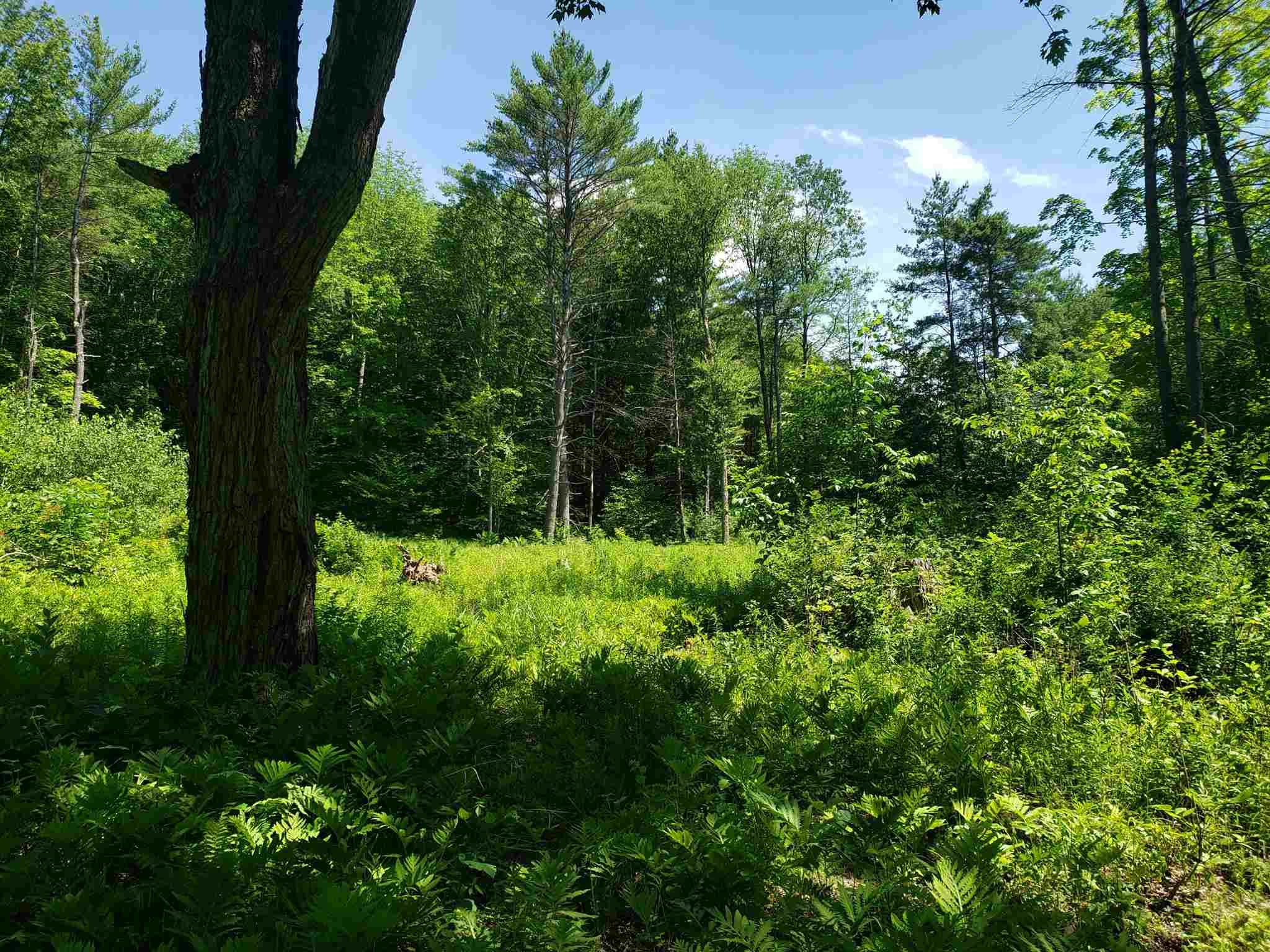 Claremont NH 03743Land for sale $List Price is $21,000