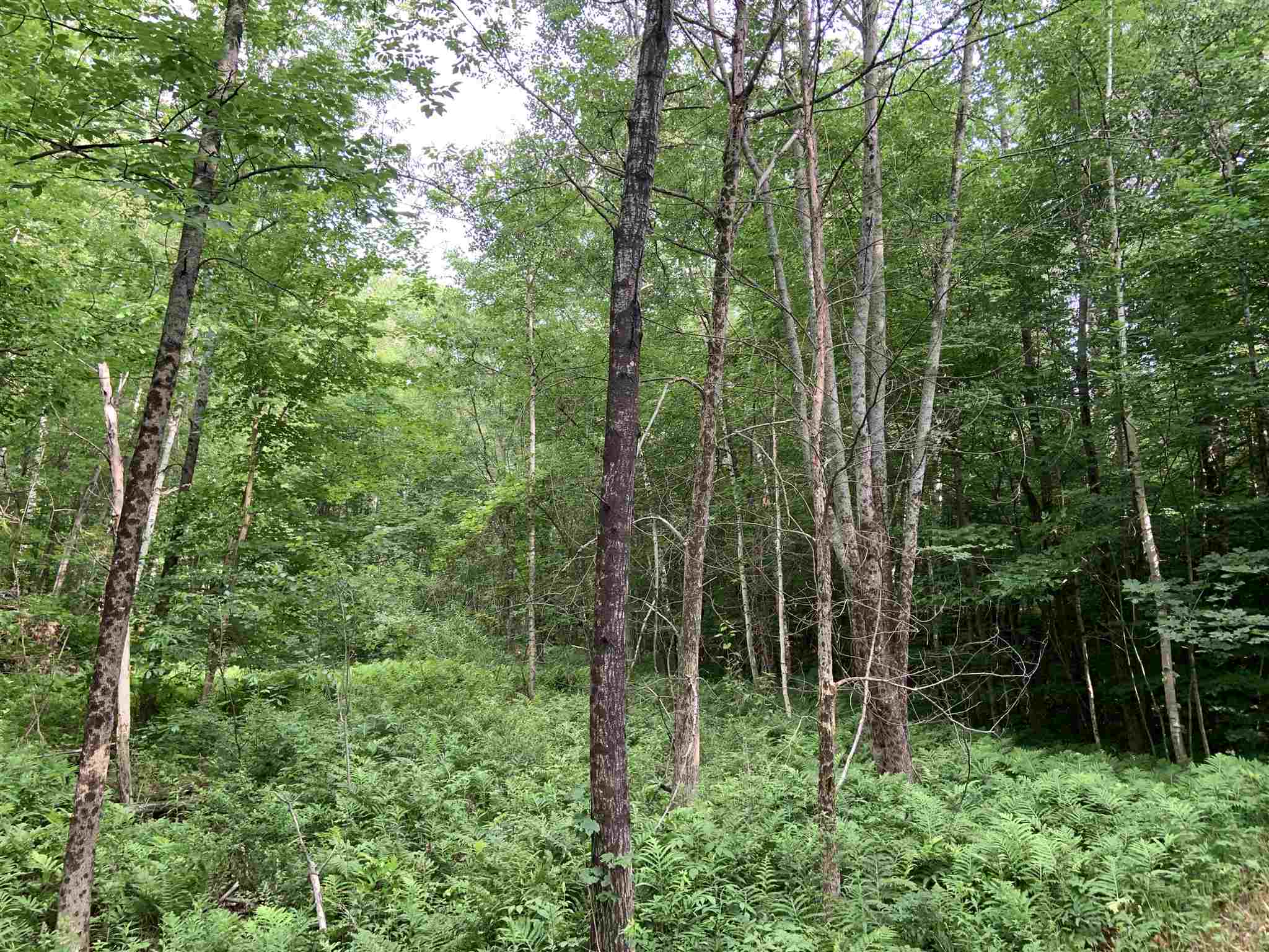 Cornish NH 03746 Land for sale $List Price is $60,000