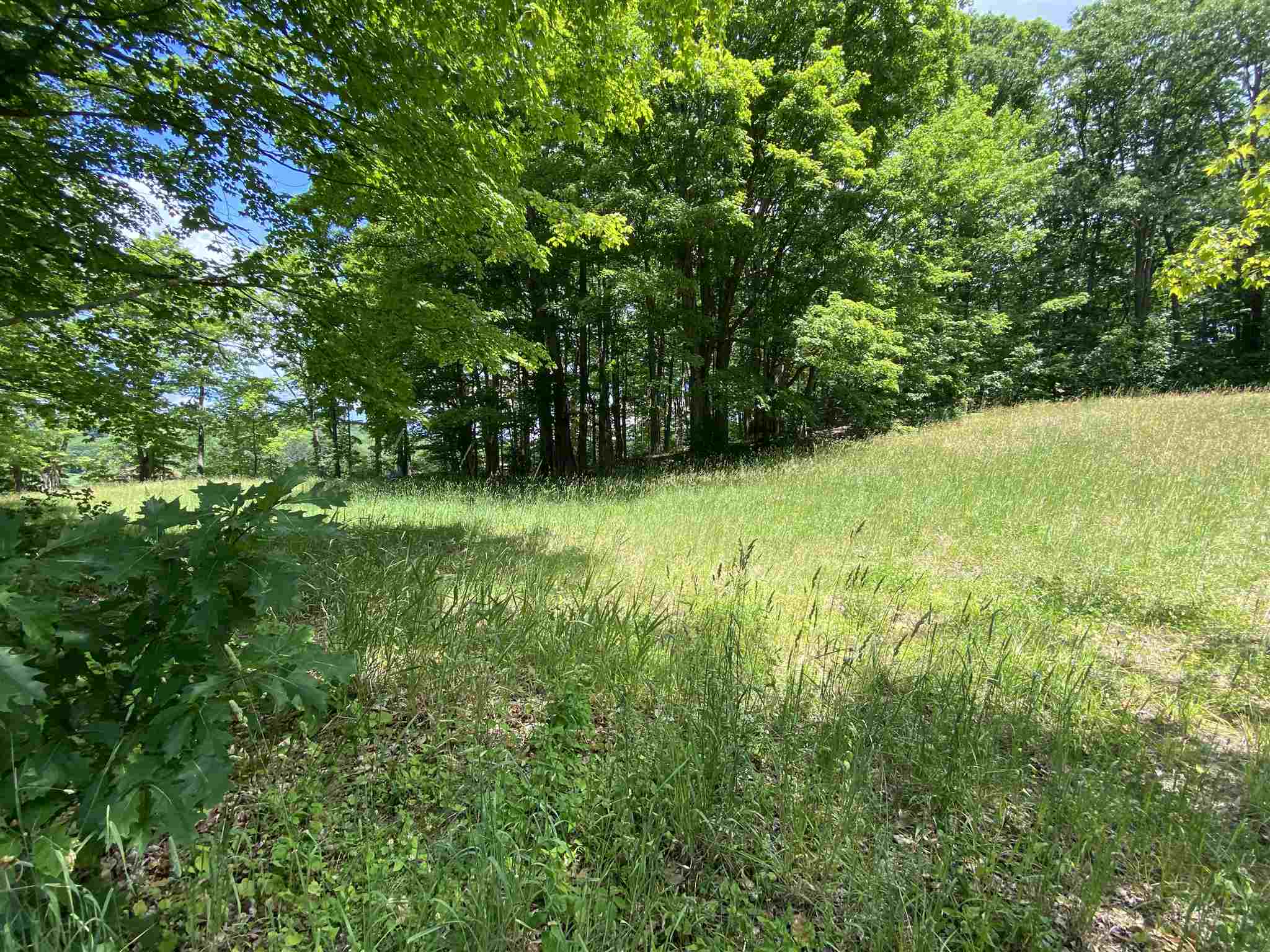 Langdon NH 03602Land for sale $List Price is $139,900