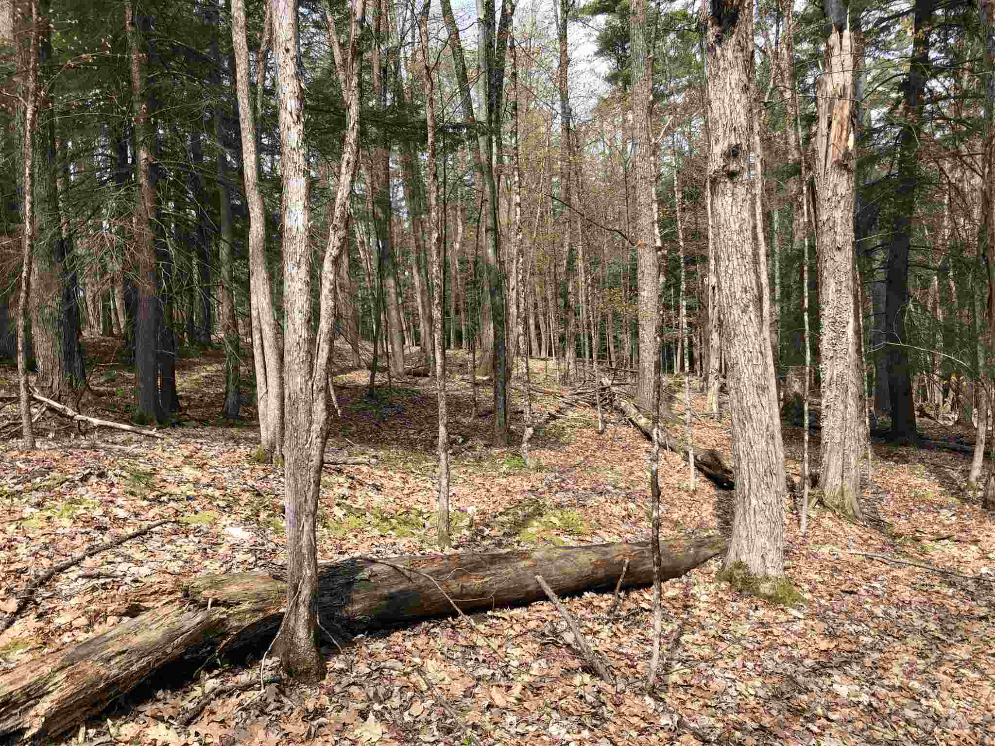 VILLAGE OF QUECHEE IN TOWN OF HARTFORD VTLAND  for sale $$10,000 | 0.9 Acres  | Price Per Acre $0
