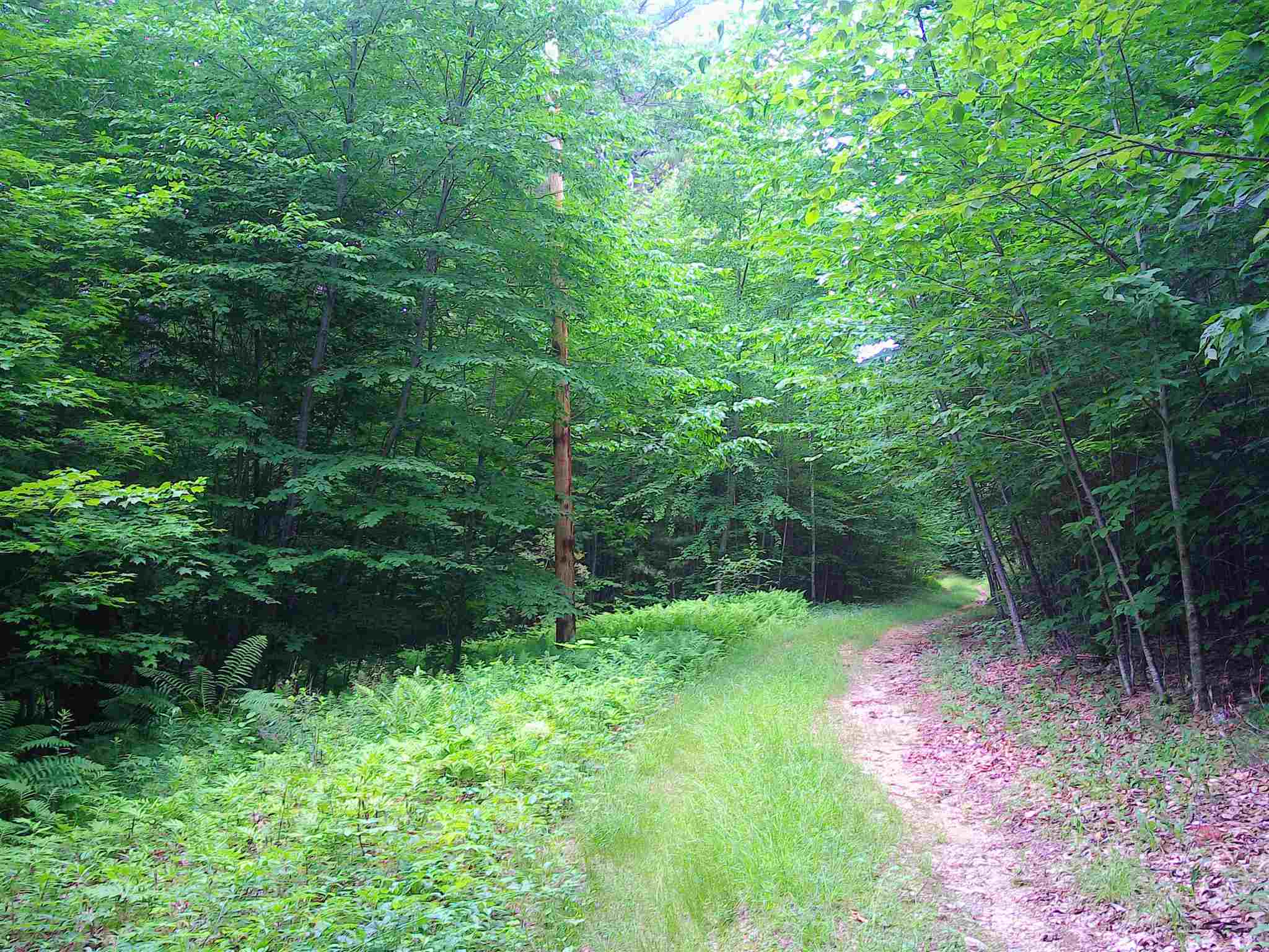 NEW DURHAM NH LAND  for sale $285,000