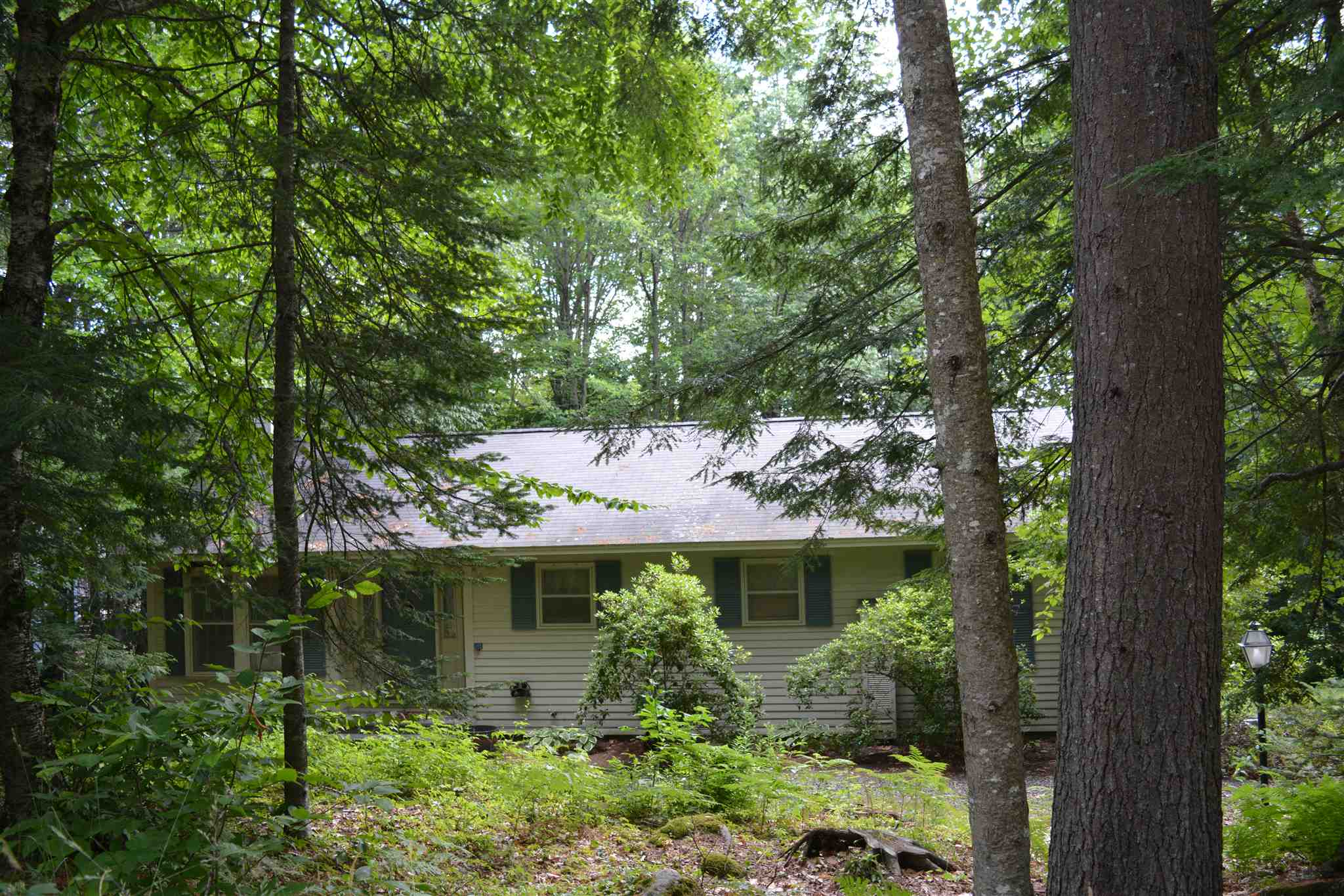 Village of Eastman in Town of Grantham NH  03753 Home for sale $List Price is $209,000