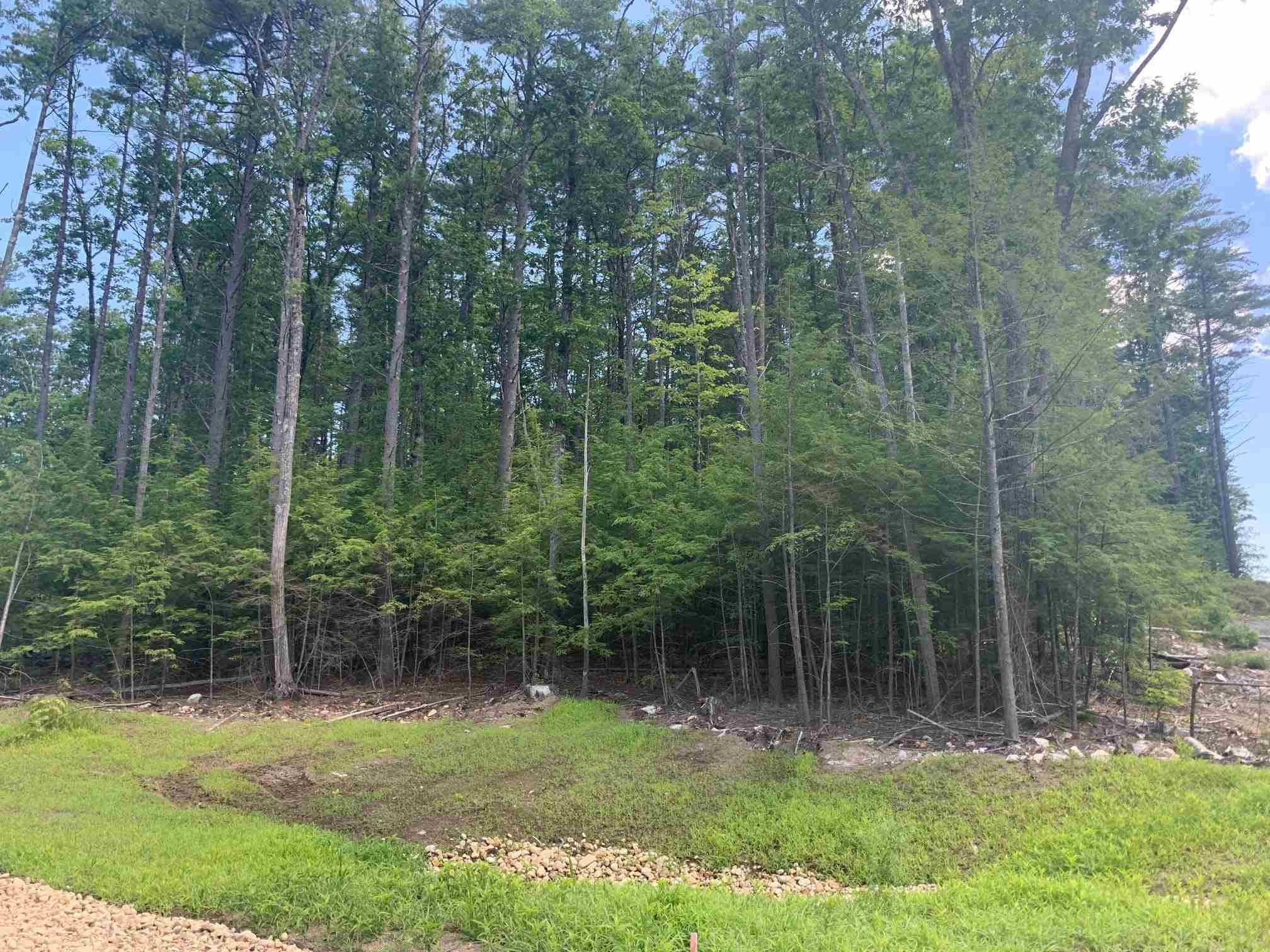 MLS 4818499: Lot 21 Gatchel Way, Amherst NH