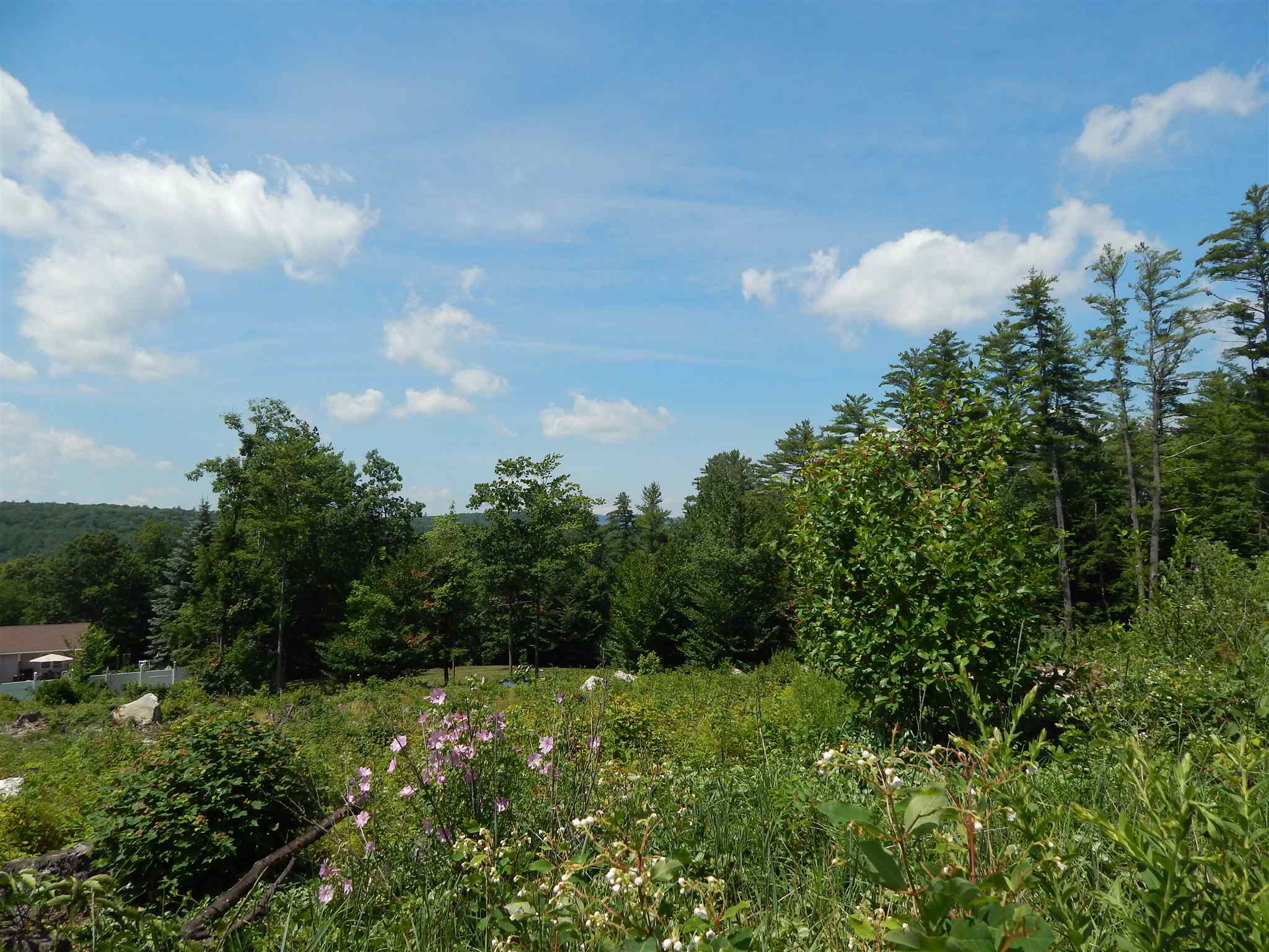 Newport NH 03773 Land for sale $List Price is $34,500