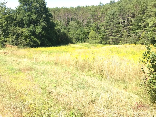 Cornish NH 03746Land for sale $List Price is $26,500