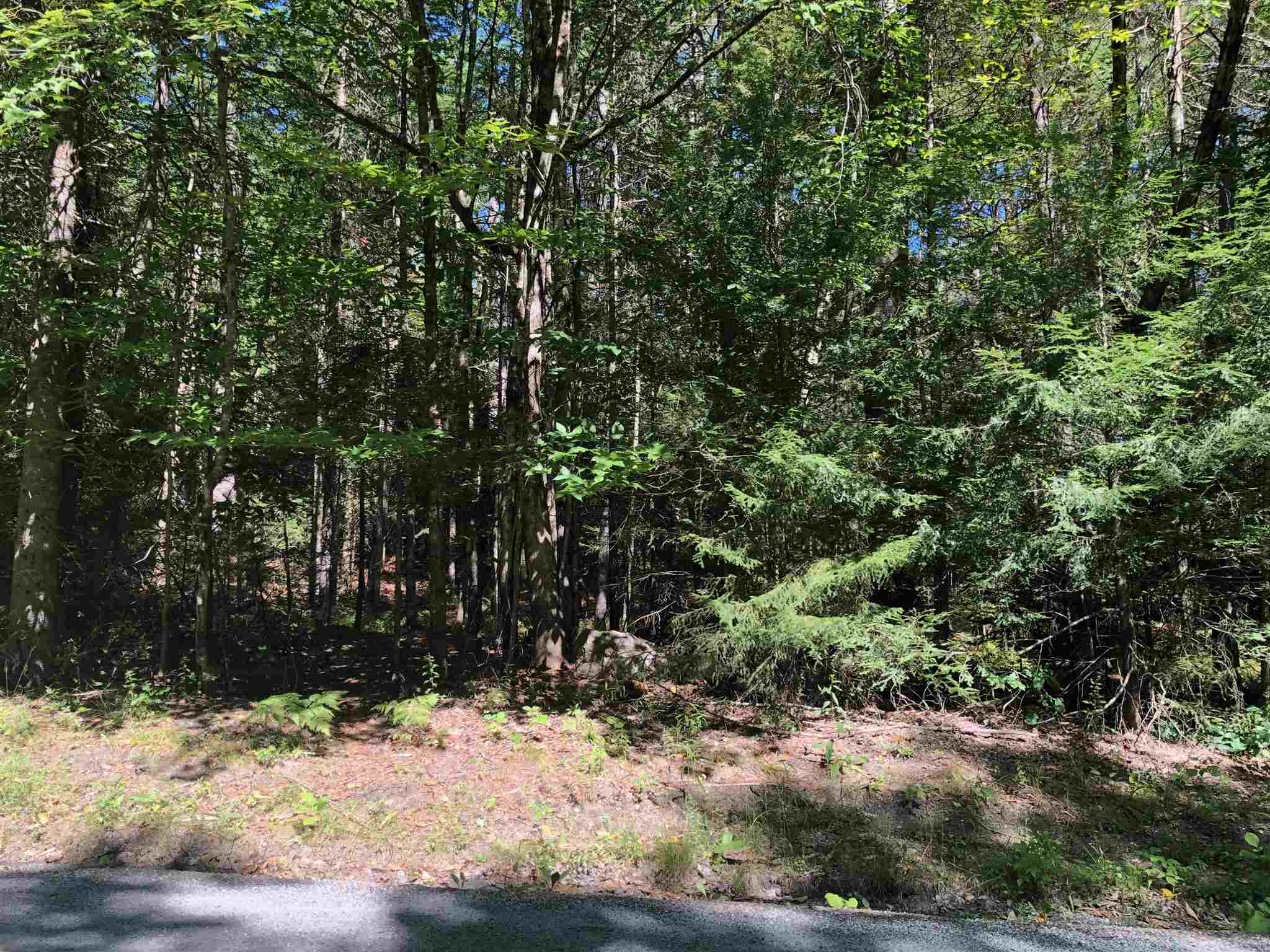 Village of Eastman in Town of Springfield NH  03753 Land for sale $List Price is $25,000
