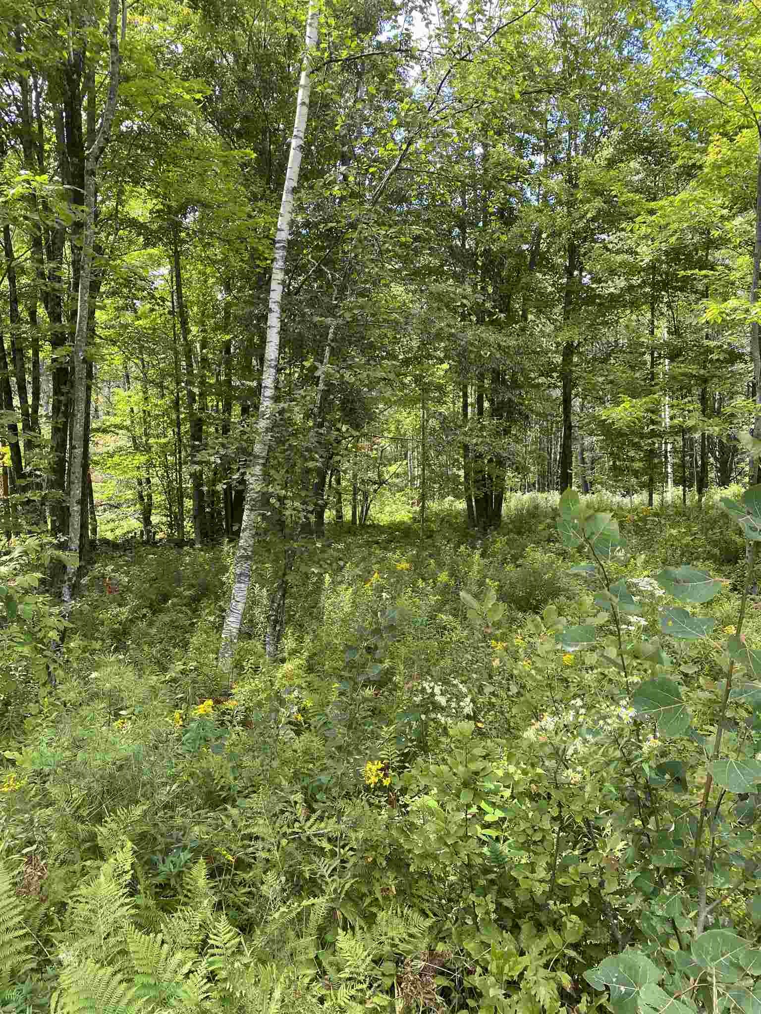 Acworth NH 03601 Land for sale $List Price is $29,000