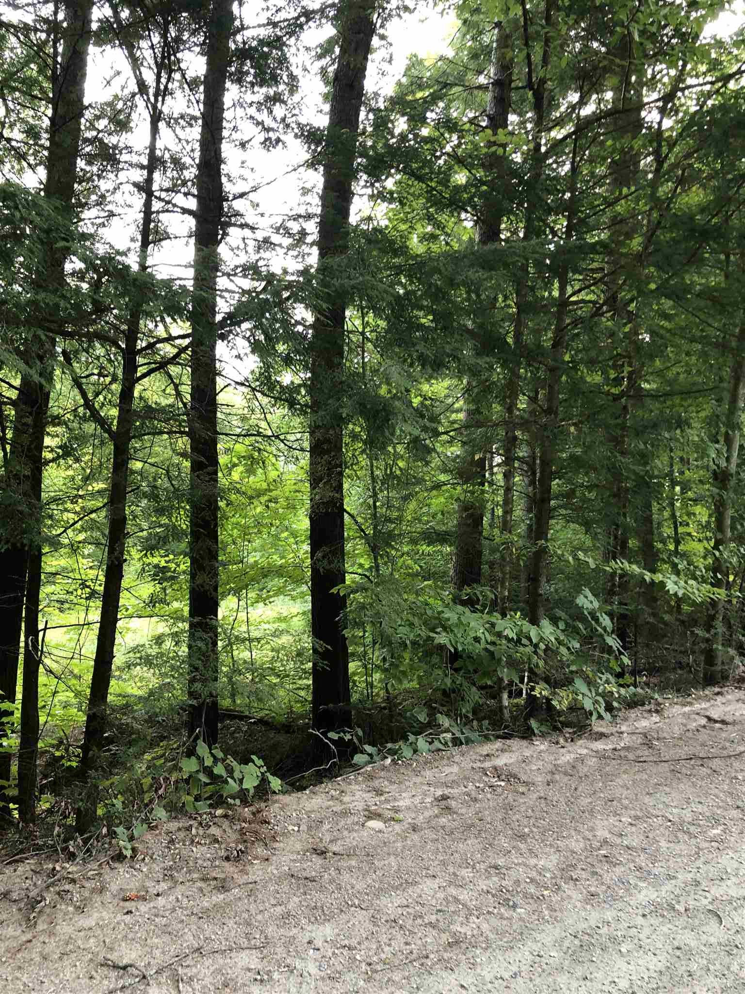 Weathersfield VT 05030Land for sale $List Price is $69,000