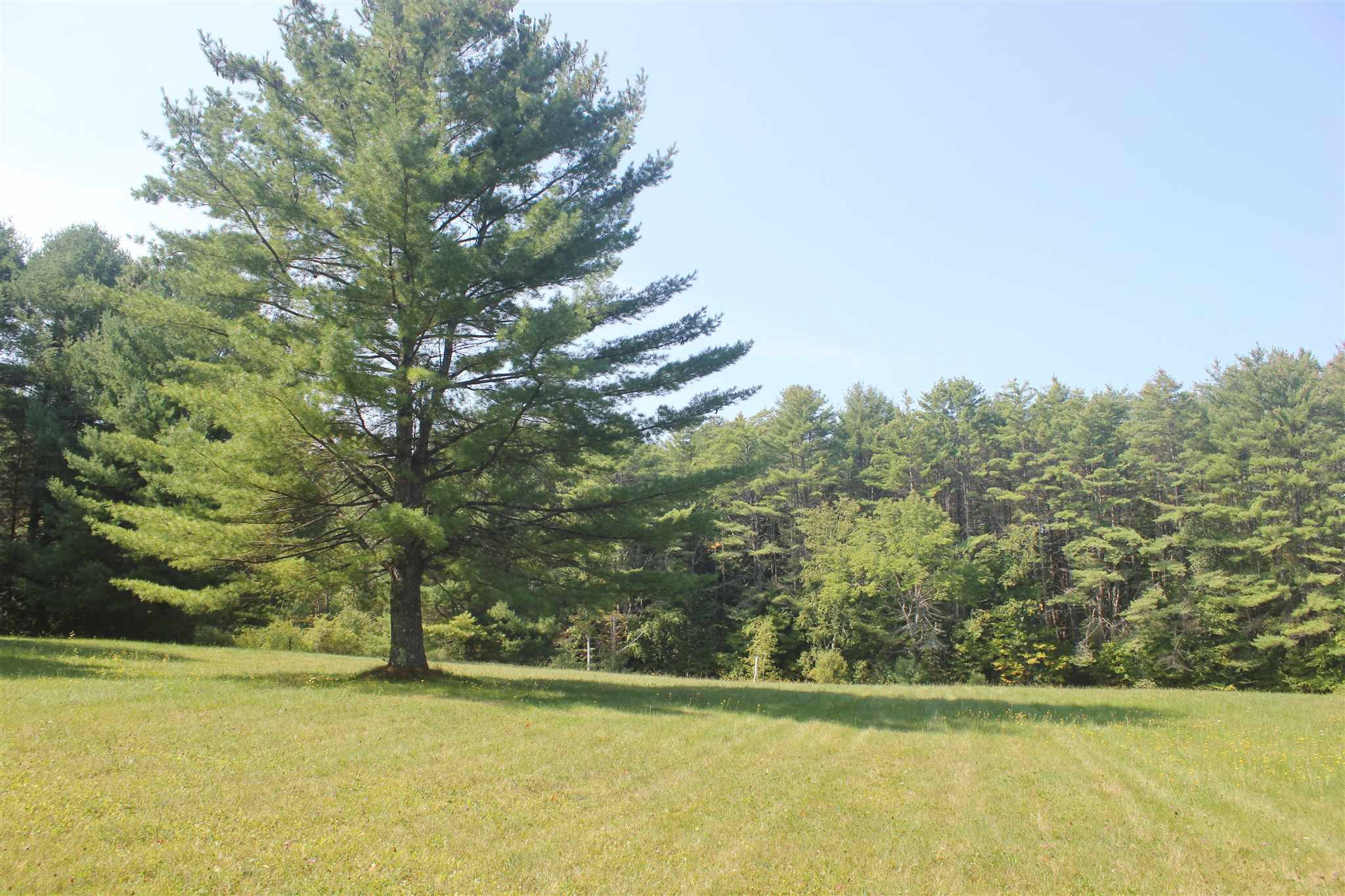 Weathersfield VT 05151Land for sale $List Price is $80,000