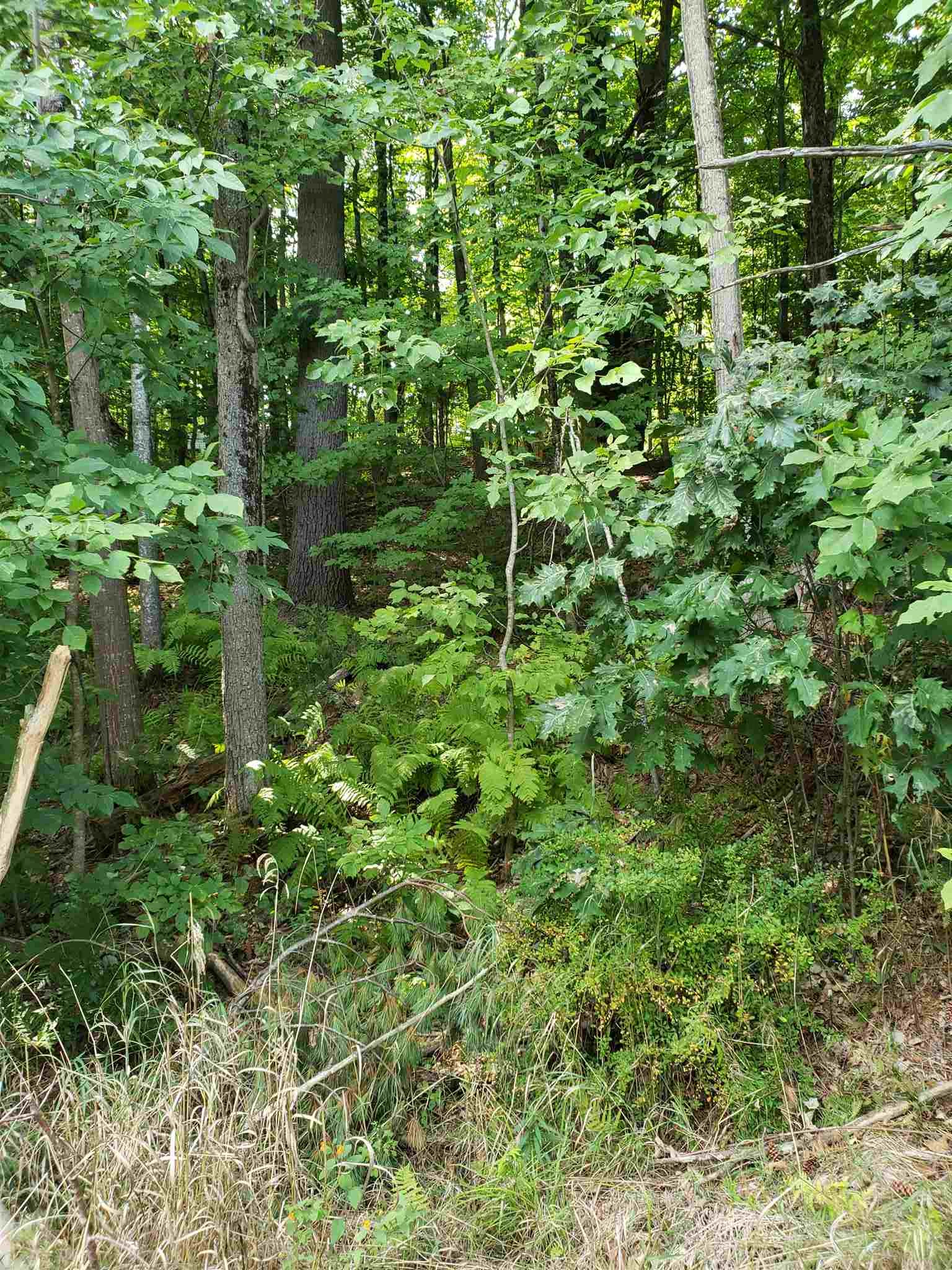 VILLAGE OF CENTER OSSIPEE IN TOWN OF OSSIPEE NHLand / Acres for sale