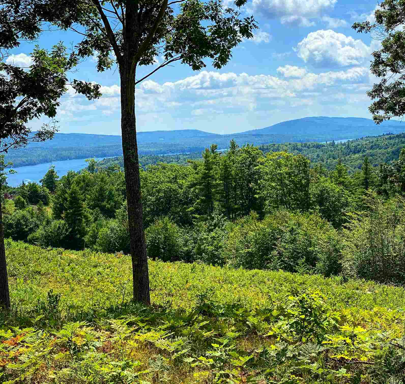 Sunapee NH 03751Land for sale $List Price is $279,000