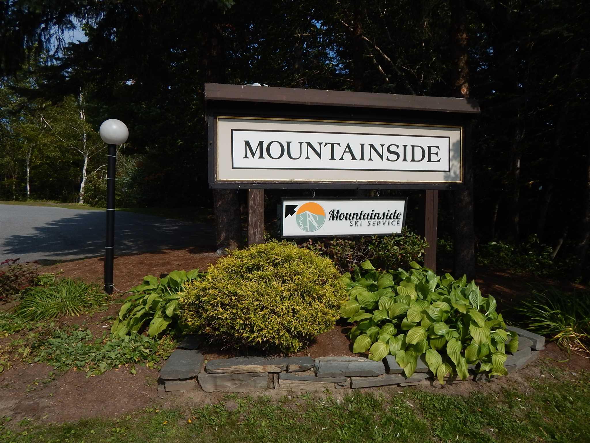 251 Mountainside