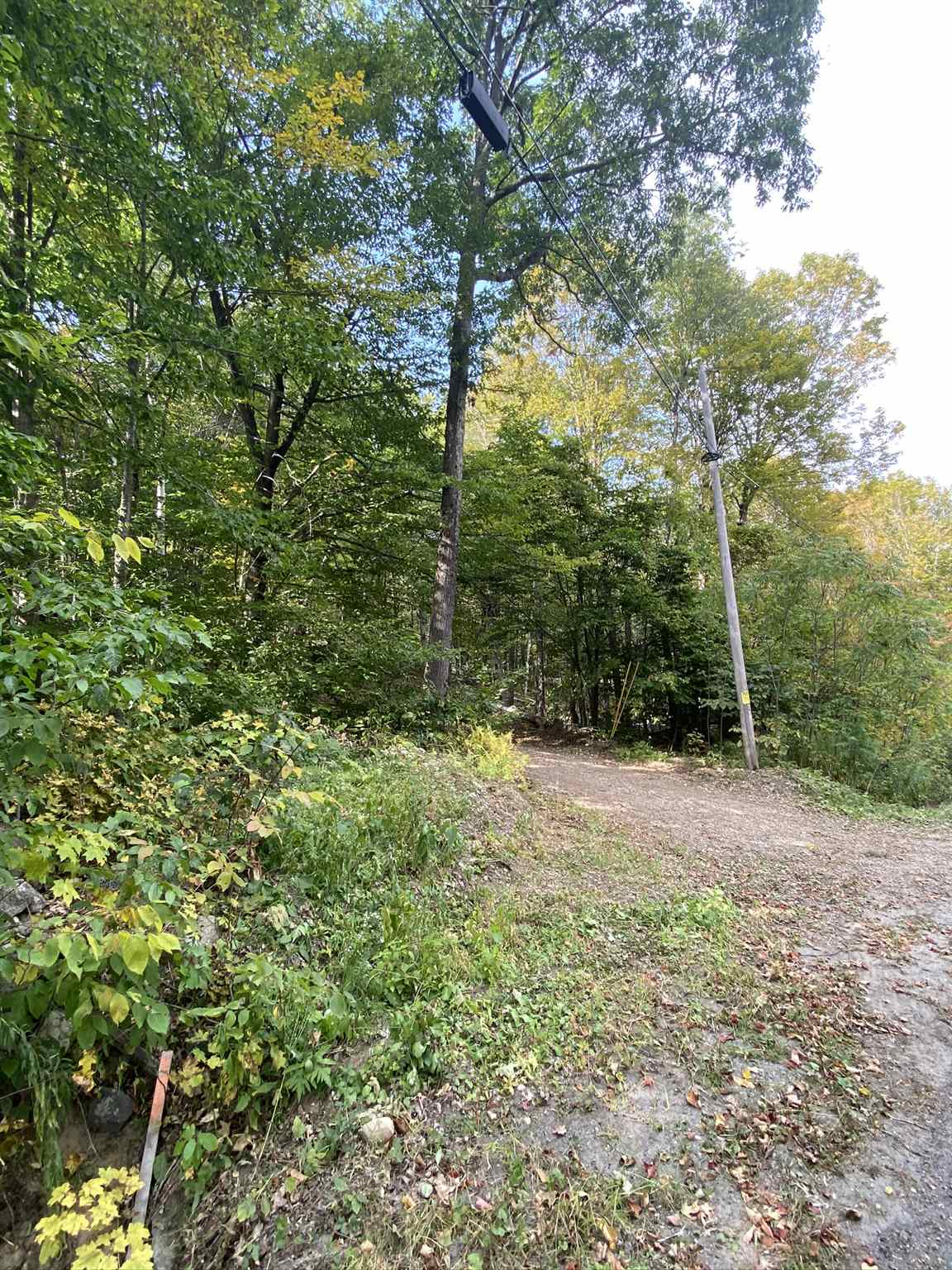 Springfield VT 05156Land for sale $List Price is $39,900