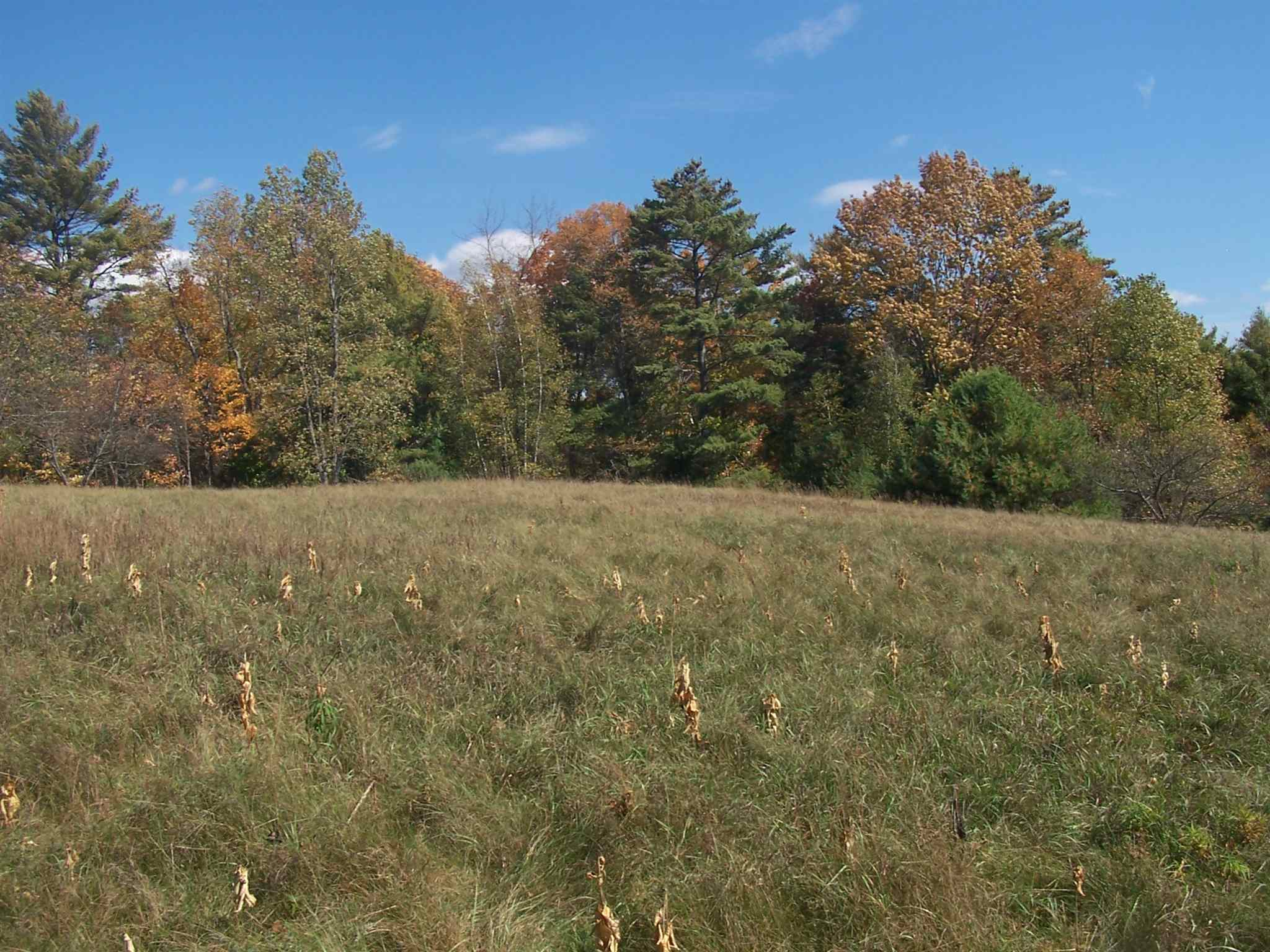 Sunapee NH 03782Land for sale $List Price is $360,000