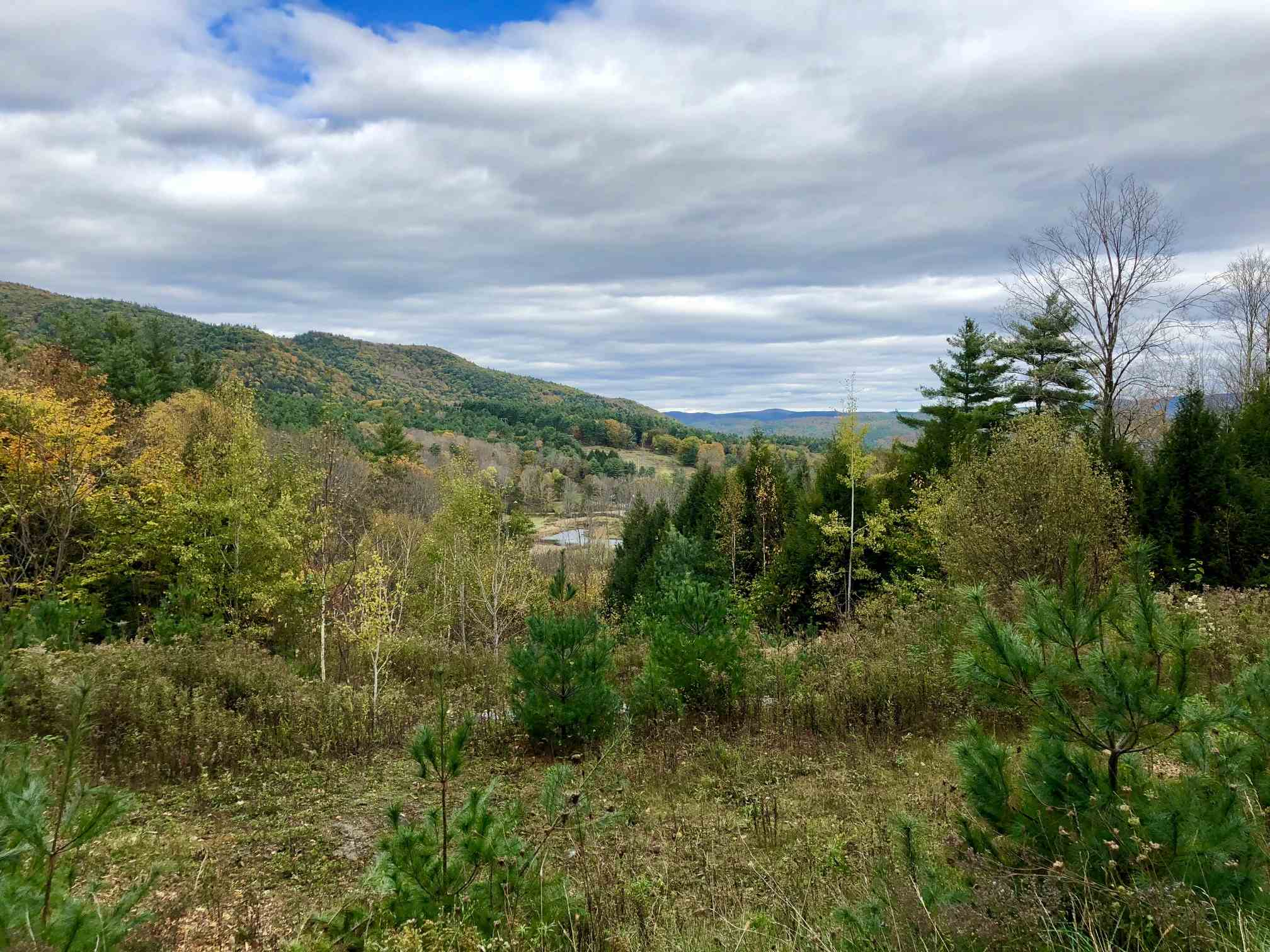 Weathersfield VT 05030 Land for sale $List Price is $85,000