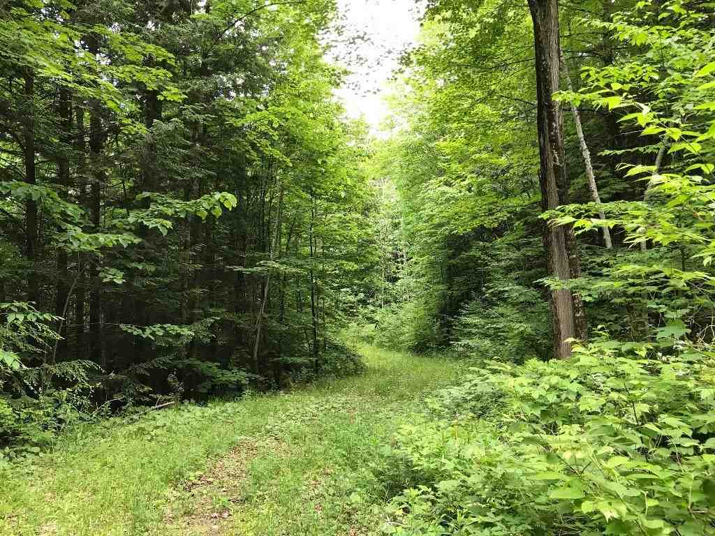 Weathersfield VT 05156Land for sale $List Price is $69,900