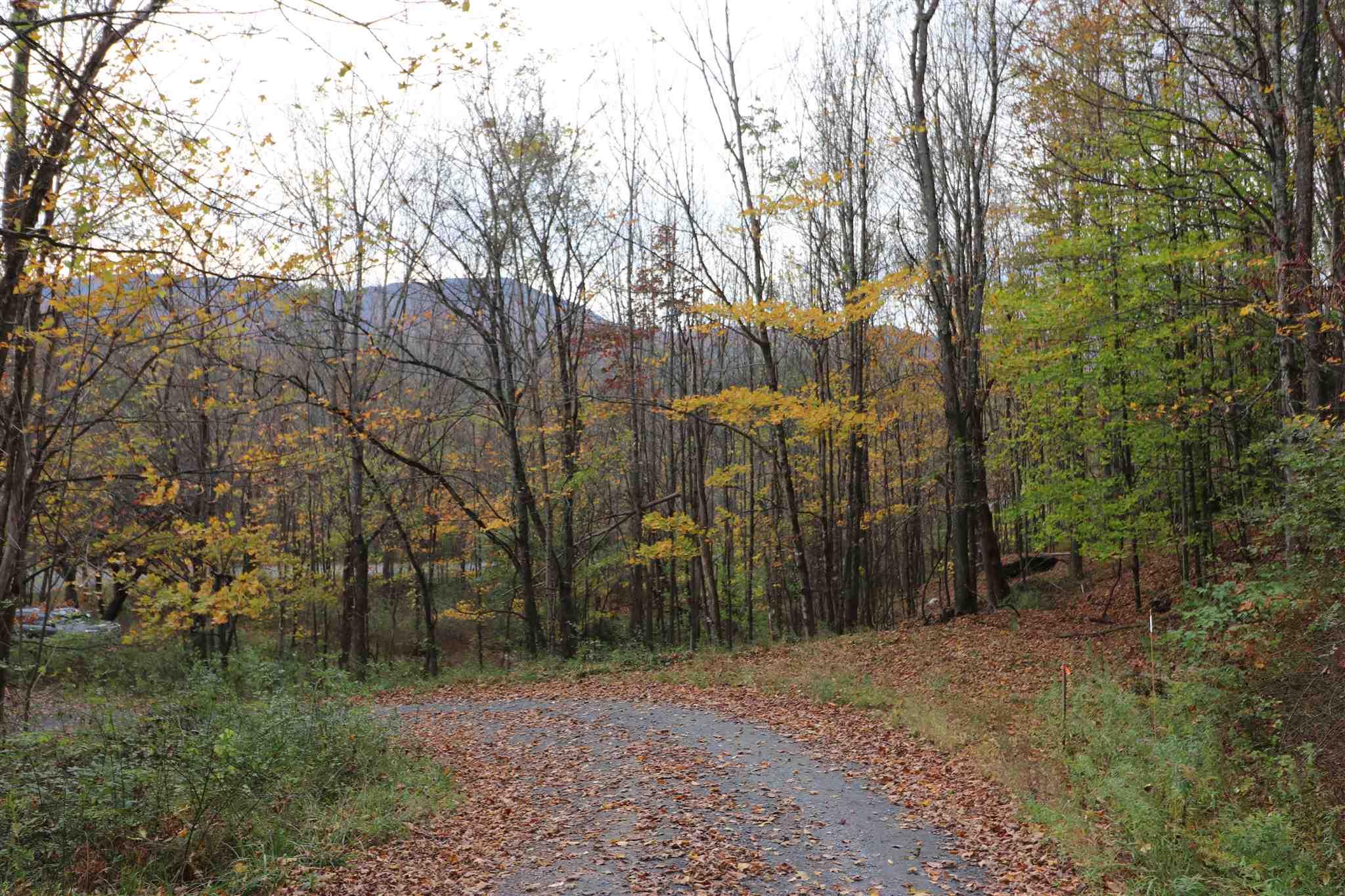 915 Freeman Hill Road