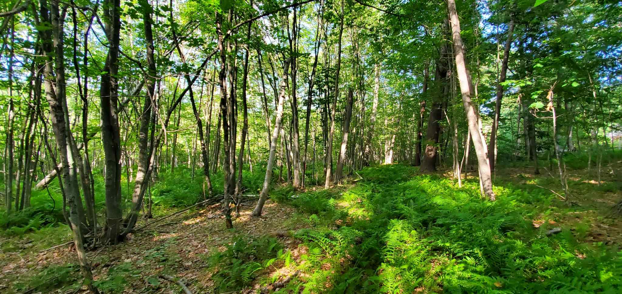 Photo of Lot 5-4 Tebbetts Road Rochester NH 03867